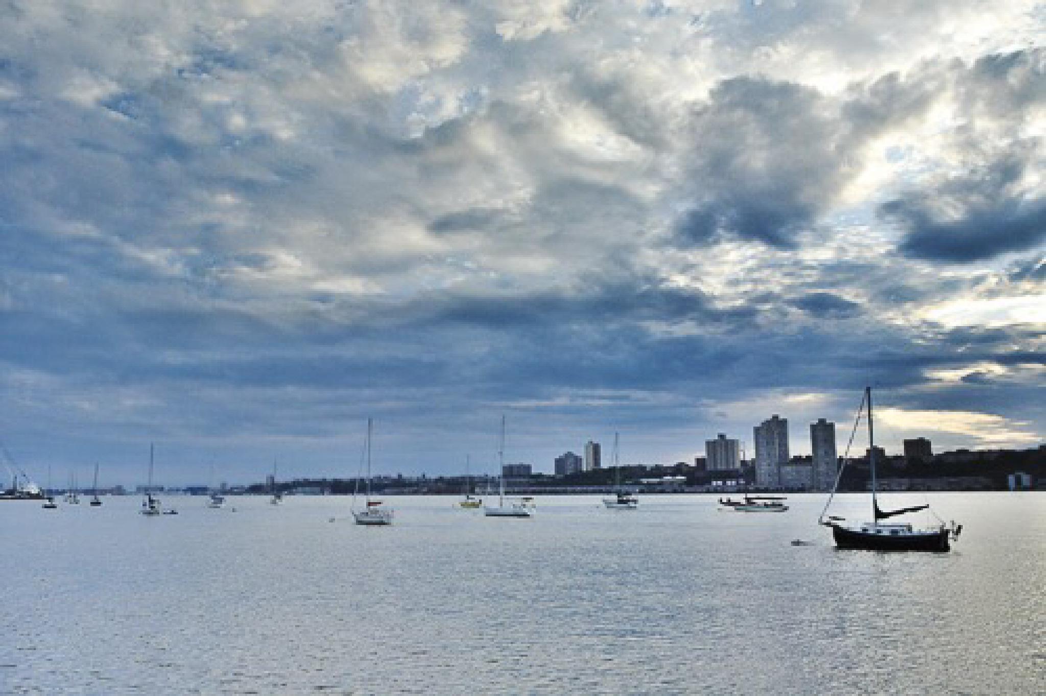 Sailboats dot NYC's Hudson River  by Sharon Winter-Schorr