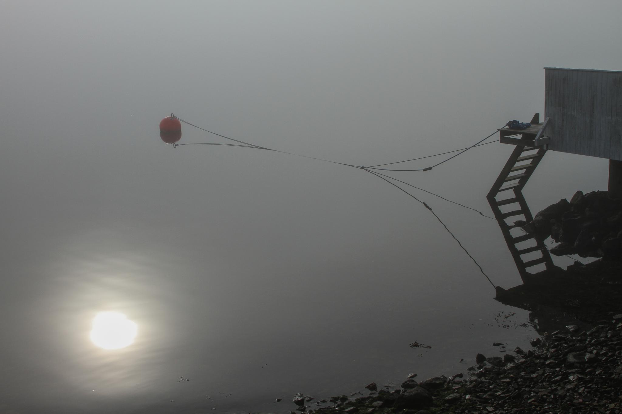 Fog by Tore_H