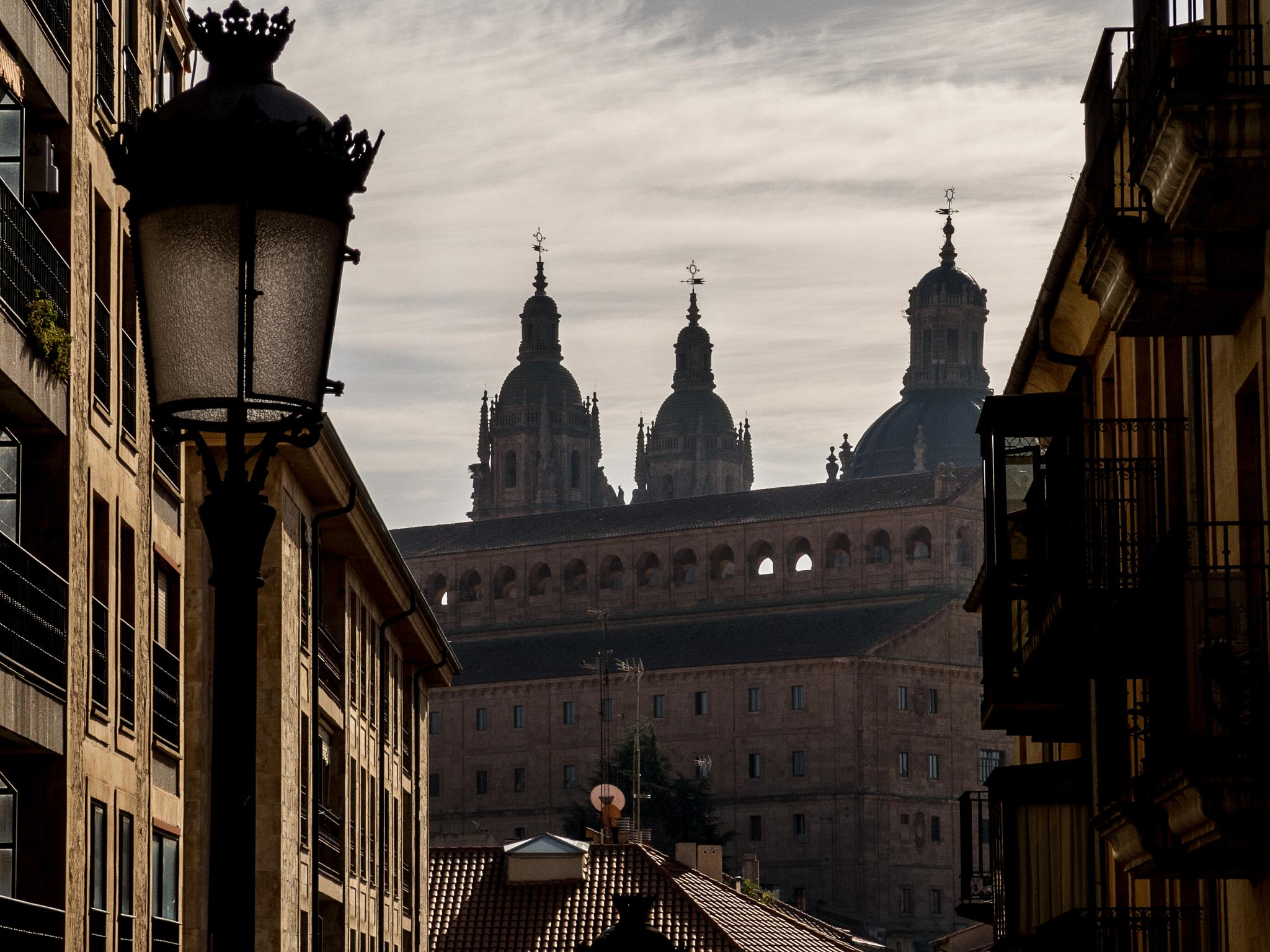 Spires of Salamanca by stephenhops