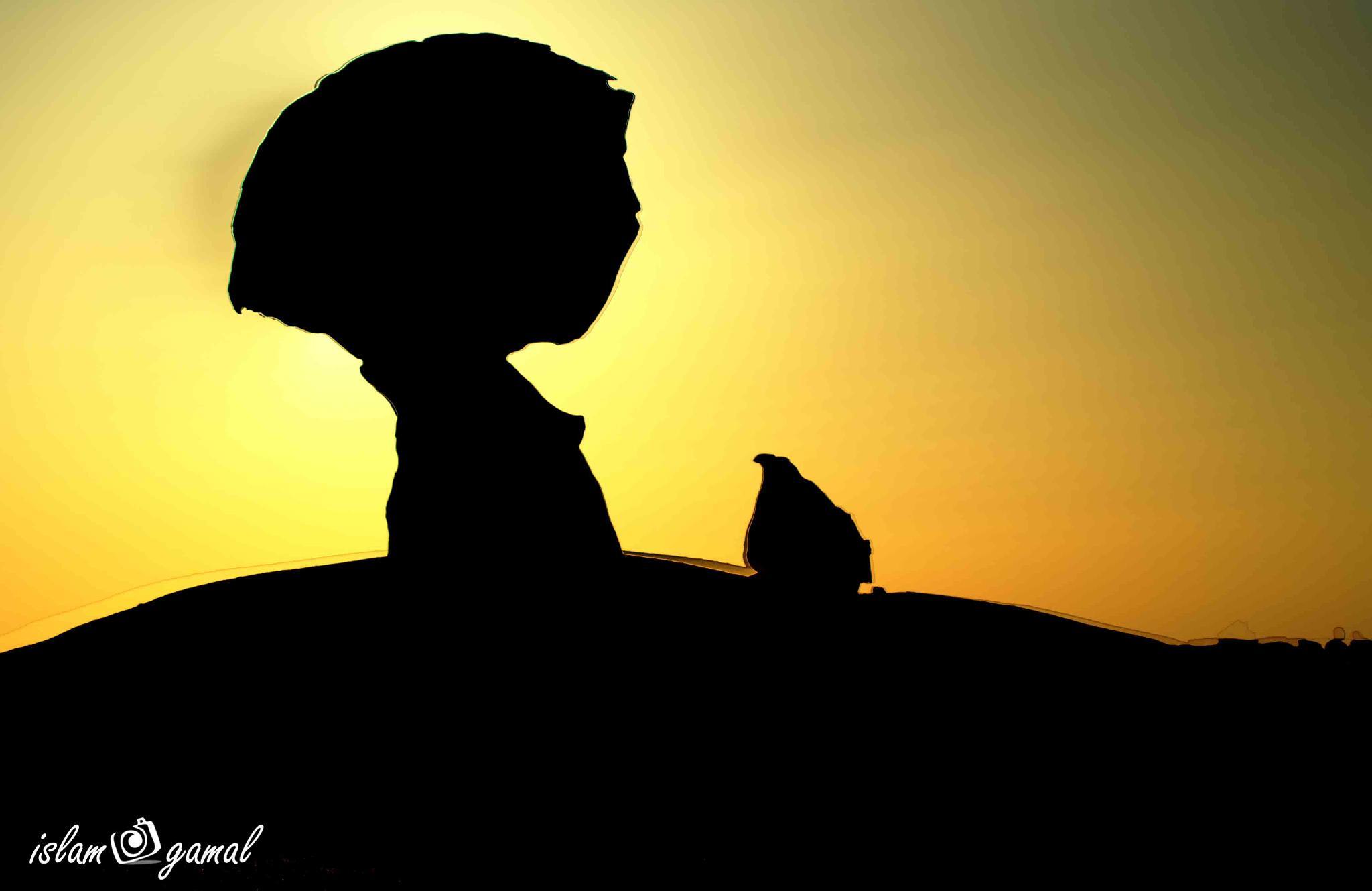 The Hen rock by searock78