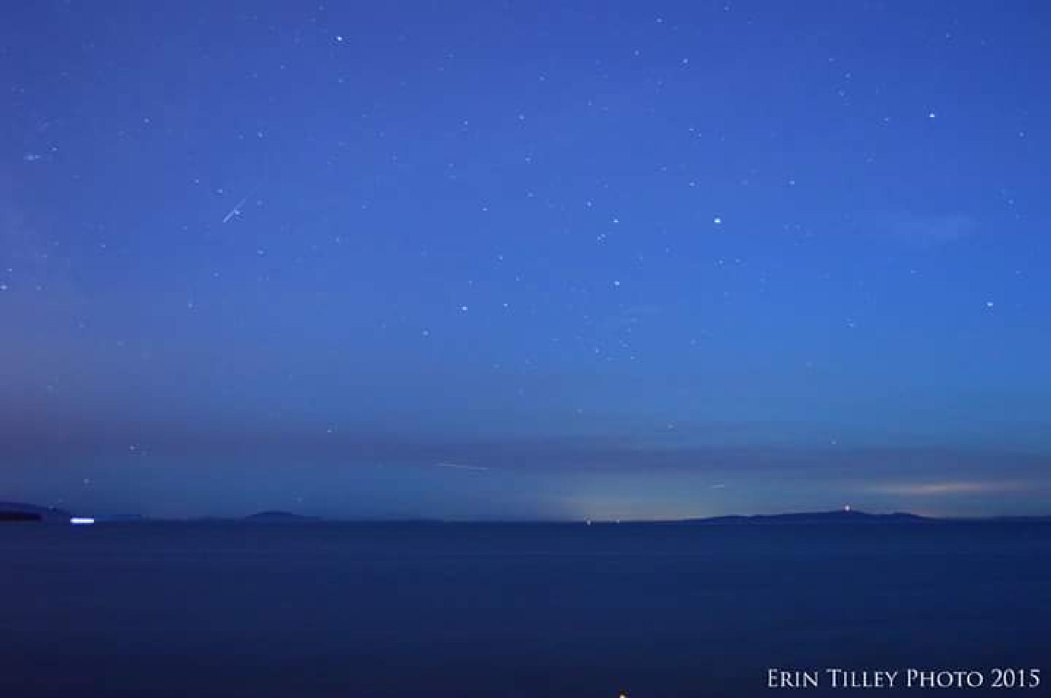 Star gazing ocean front  by Erin Tilley Photography
