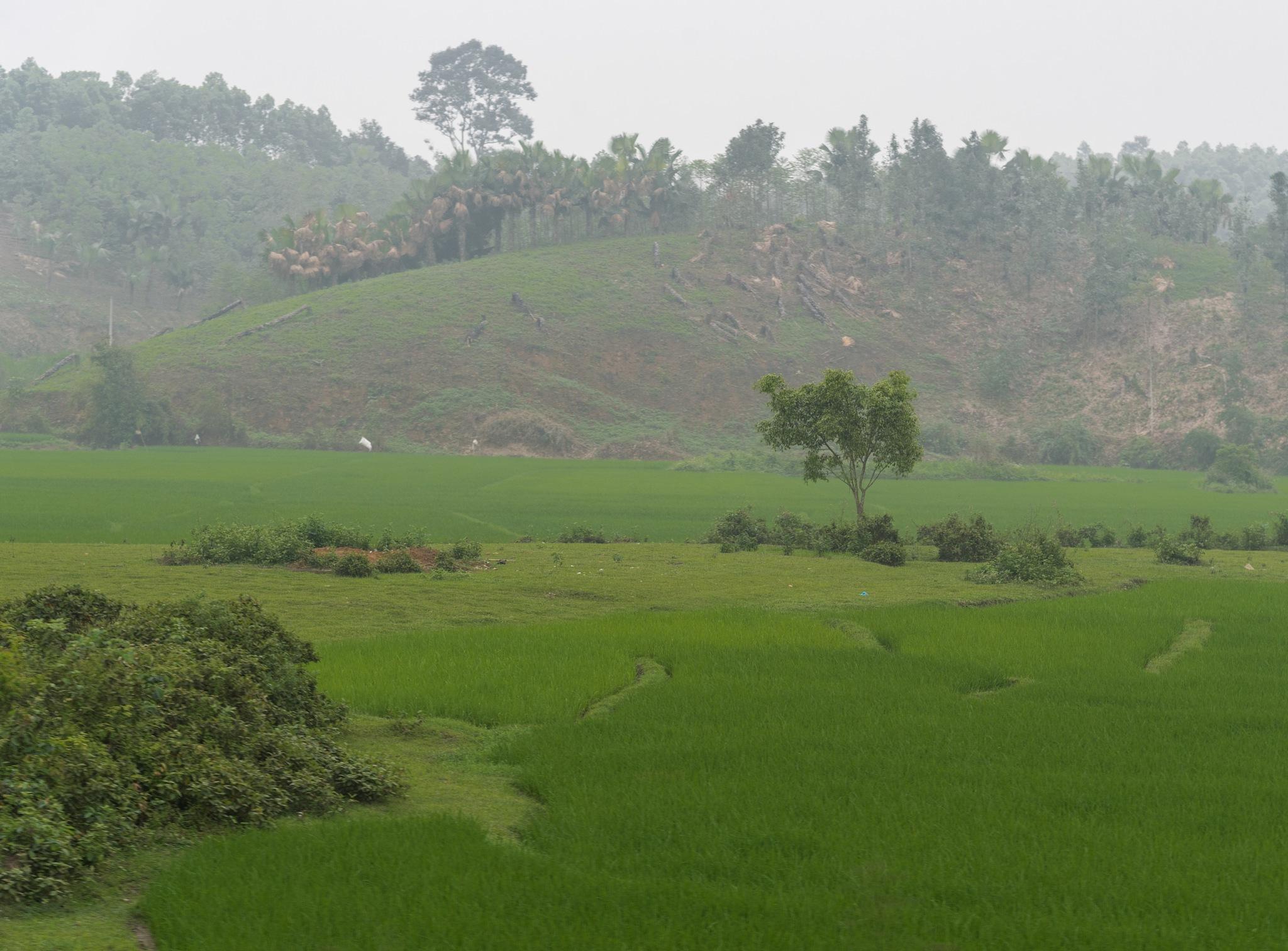 HANOI-SAPA ON A MISTY DAY by DrJohnHodgson