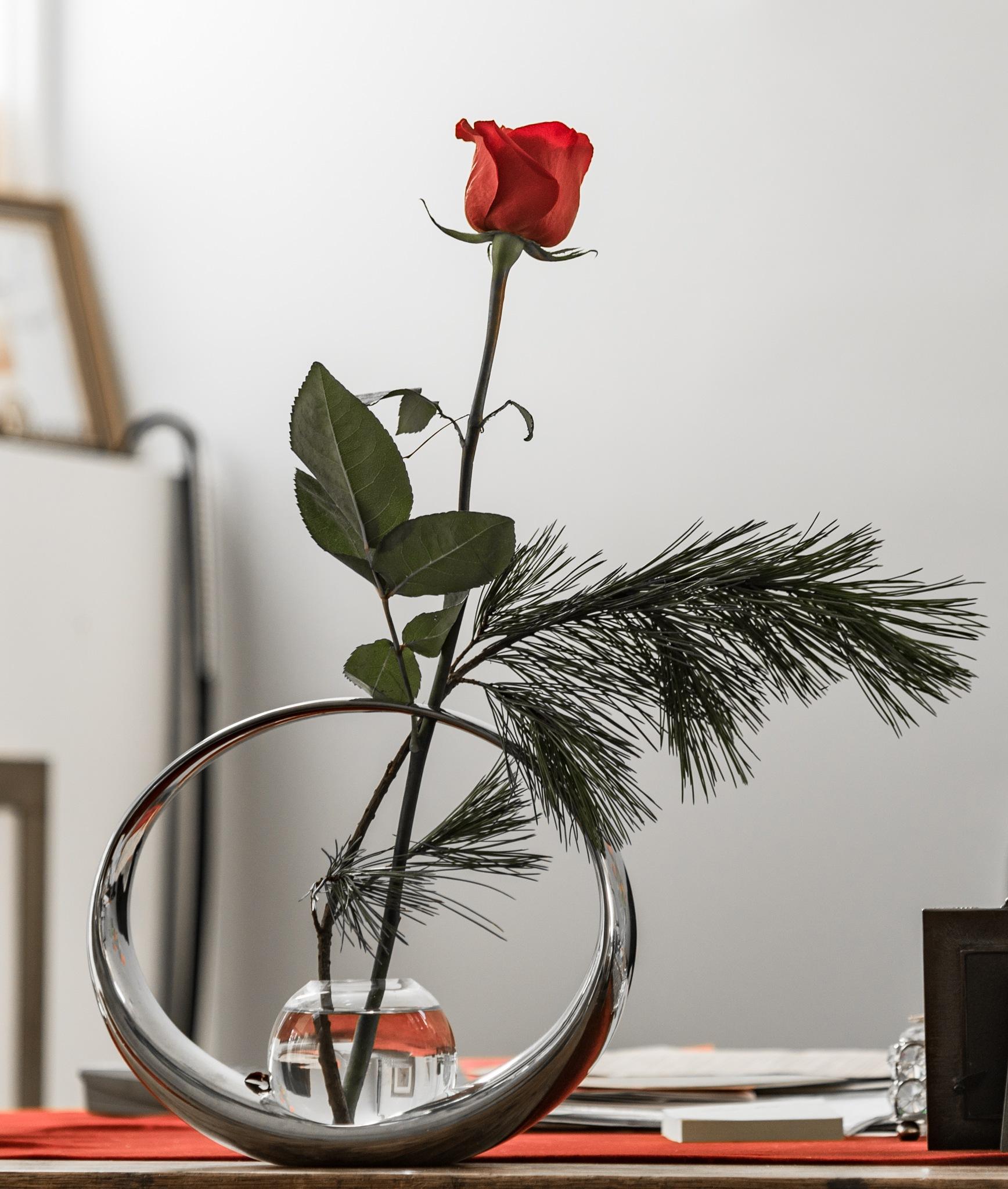 RED ROSE ON DESK by DrJohnHodgson
