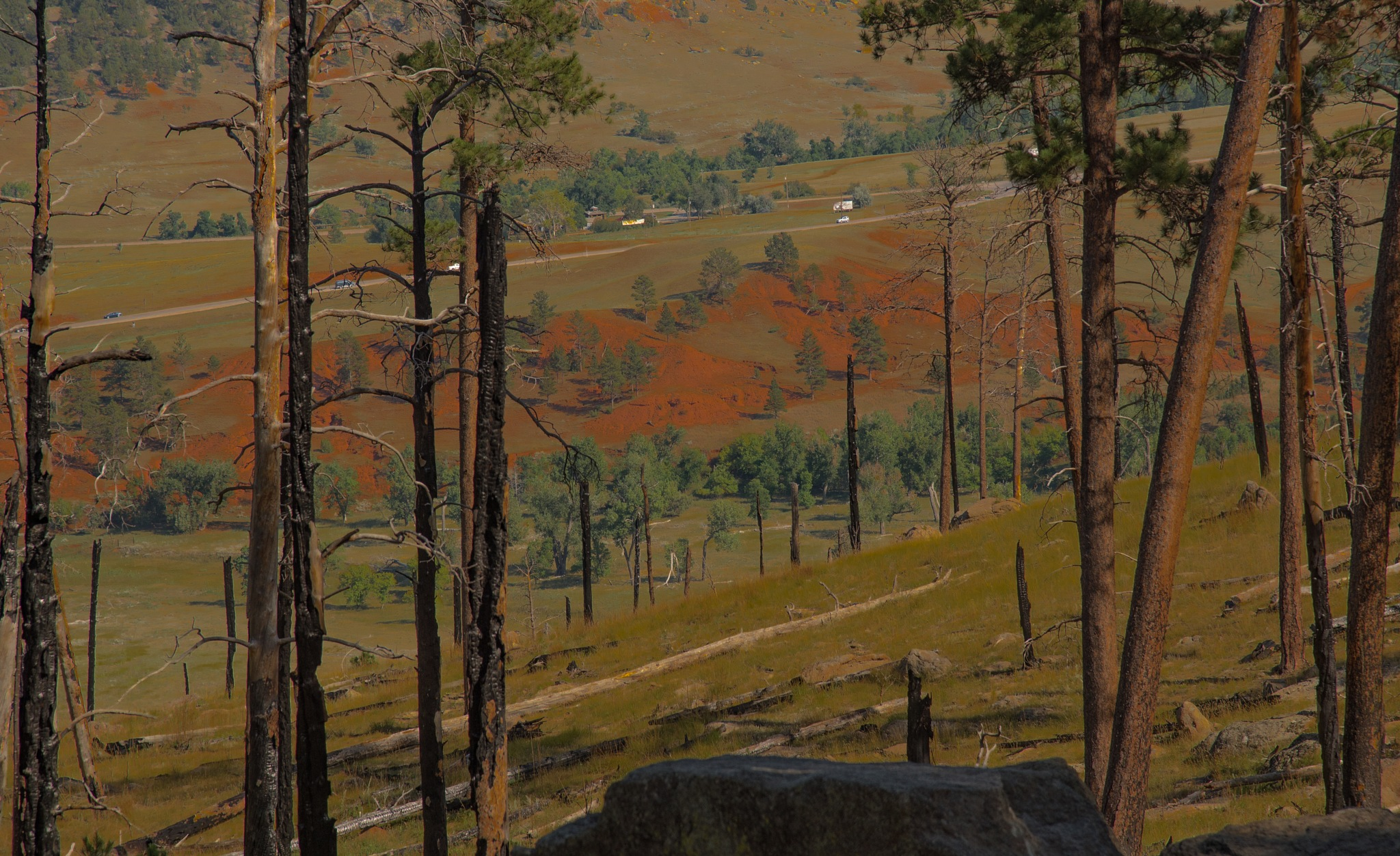 LANDSCAPE: Downhill from base of Devils Tower by DrJohnHodgson