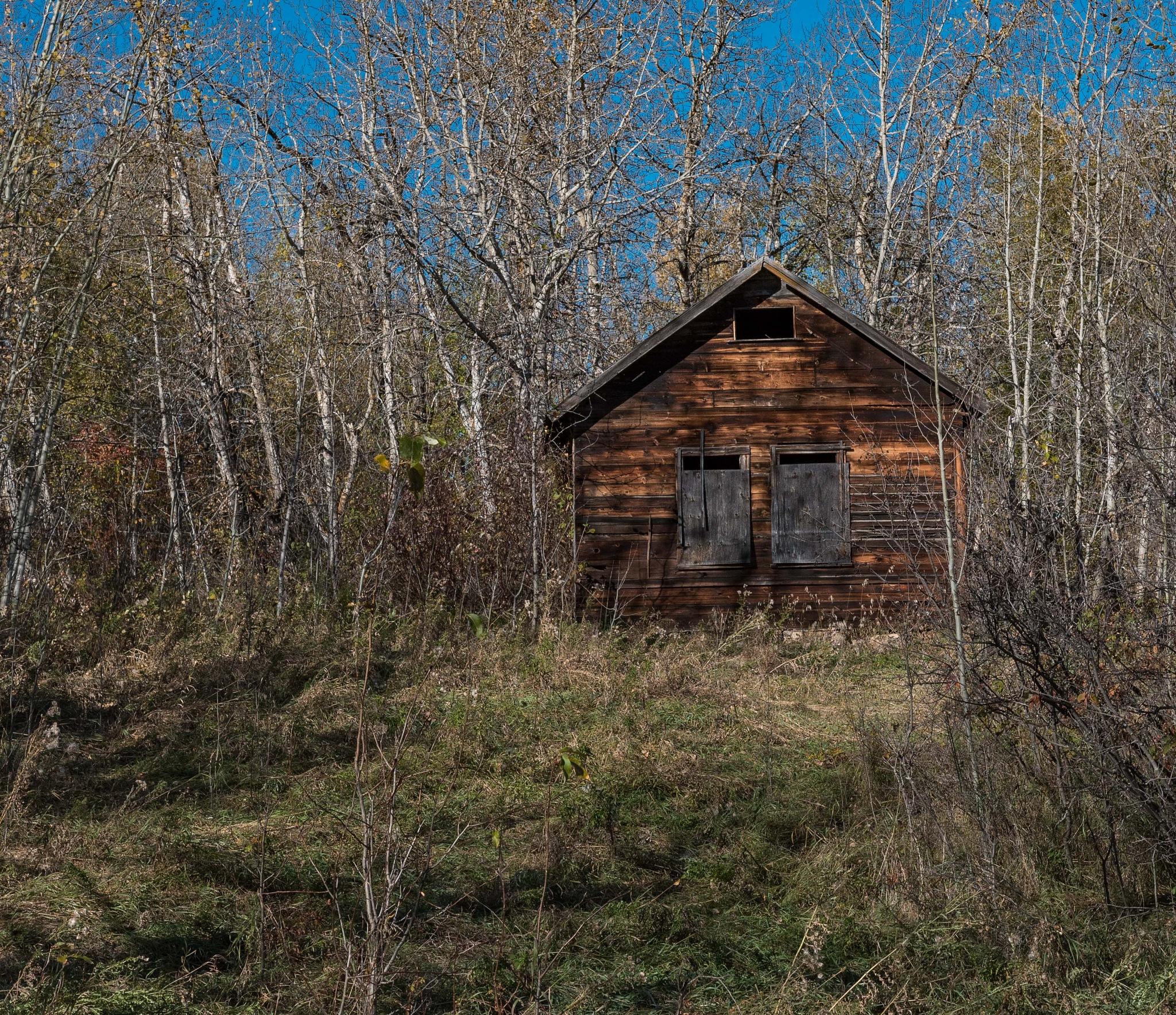 LITTLE HOUSE ON THE PRAIRIE by DrJohnHodgson