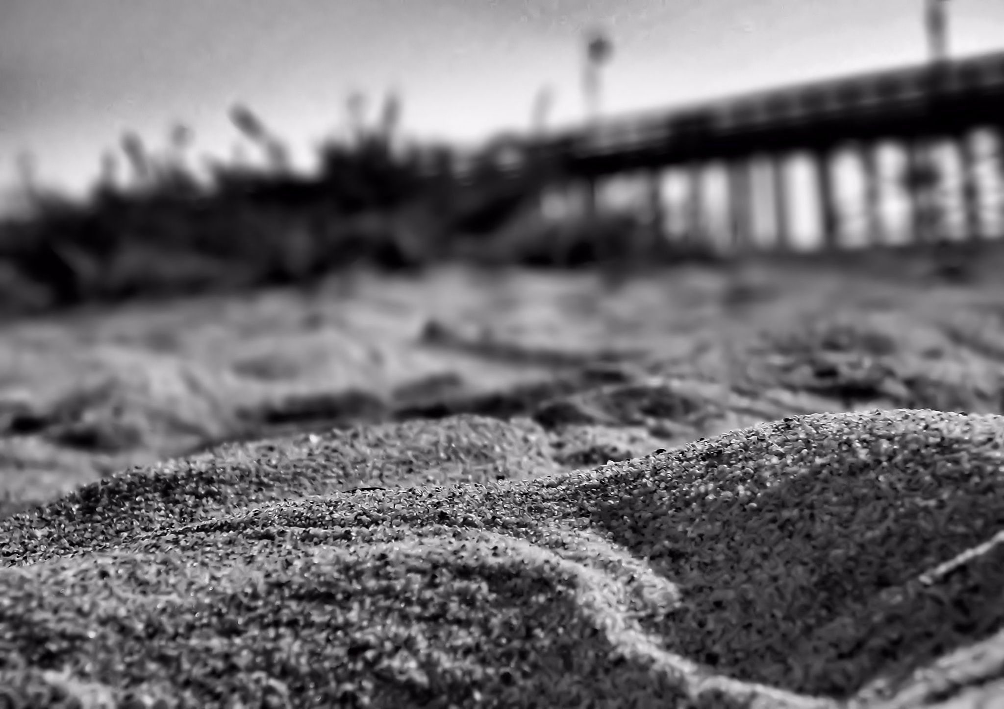 Near the pier  by Tiffanie Faith Chezum