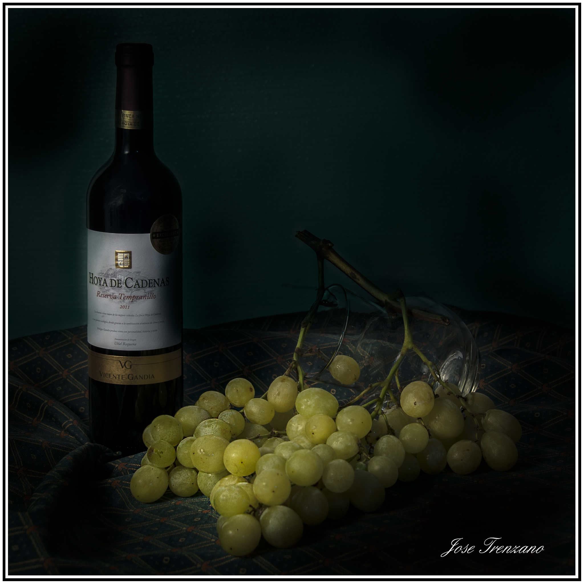 Uva y vino by José Trenzano Martinez