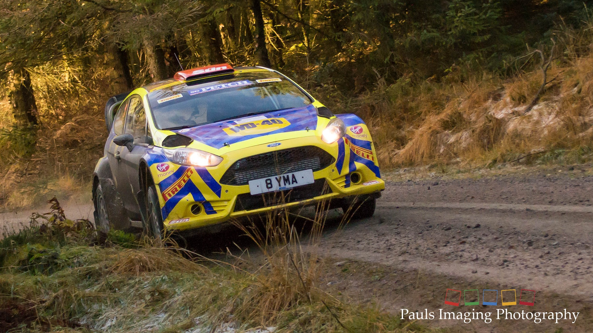 Grizedale Stages Rally 2016 - Ford Fiesta R5 by PaulsImaging