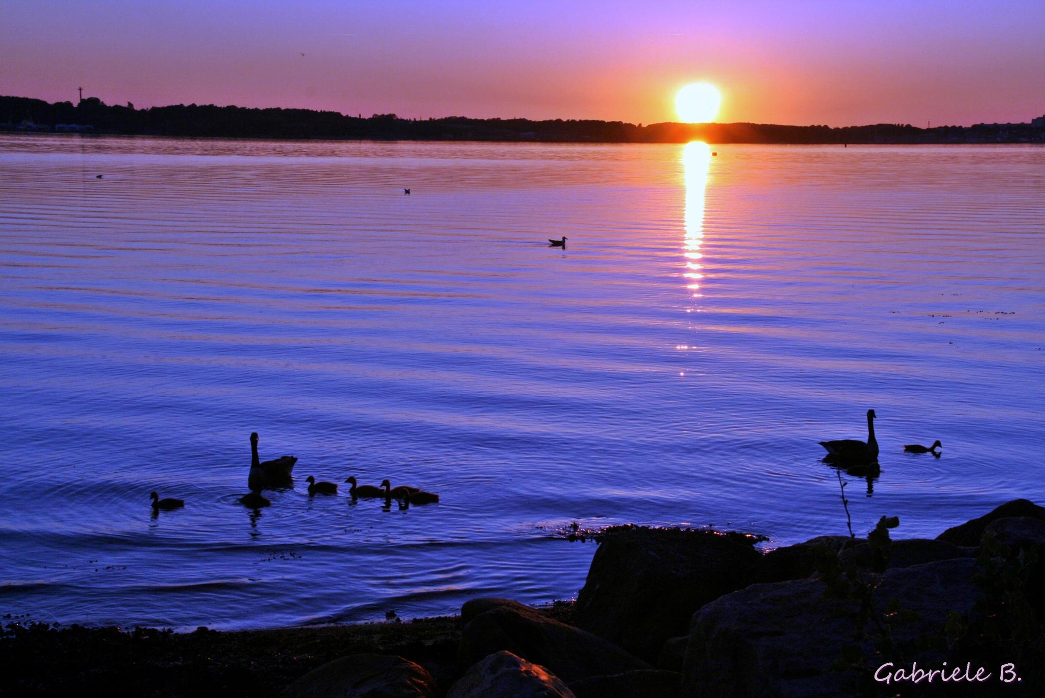 Baltic sea by gabrielehelenebittner