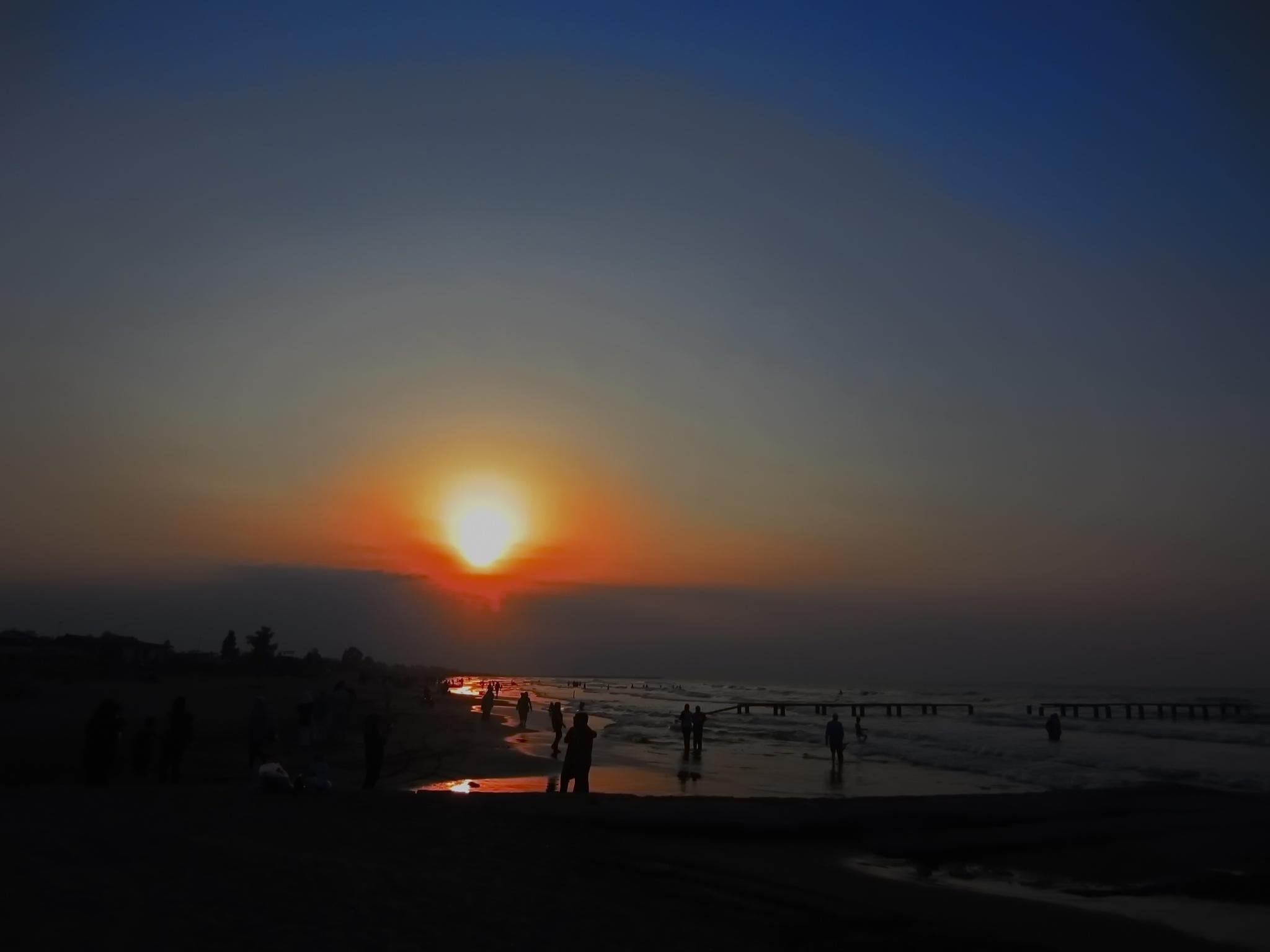 sun watchers by kate1480