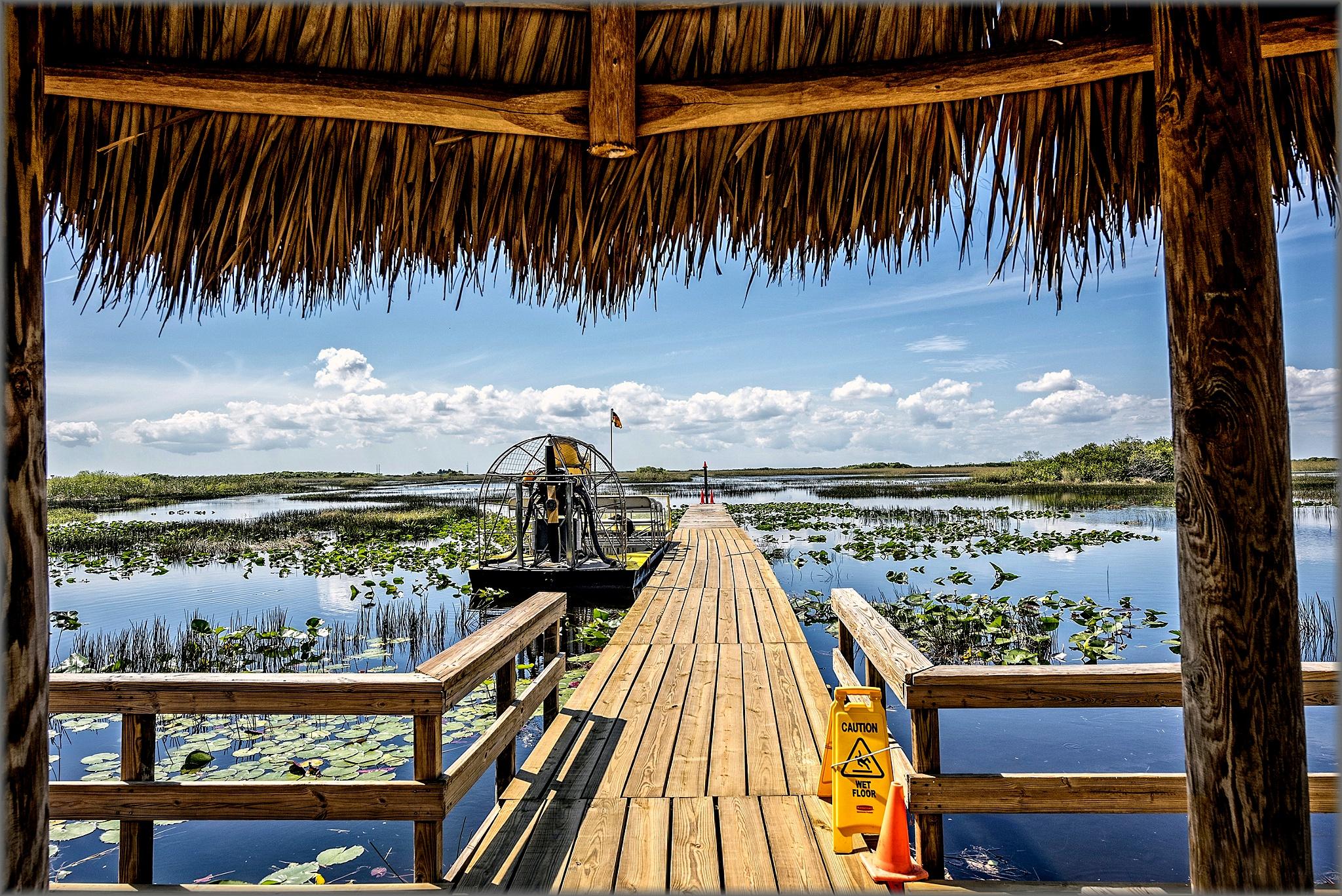 """Everglades"" by Svein Hurum"