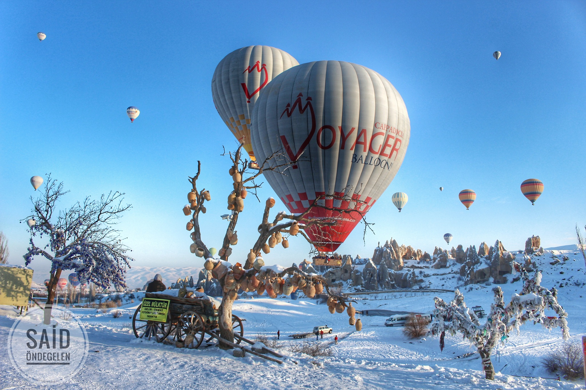 Trees and Hot Air Ballons by saidondegelen
