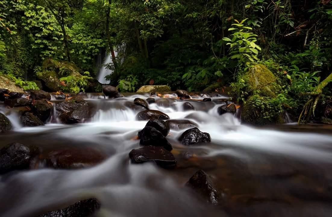 Water Flow by Hendra Gunawan