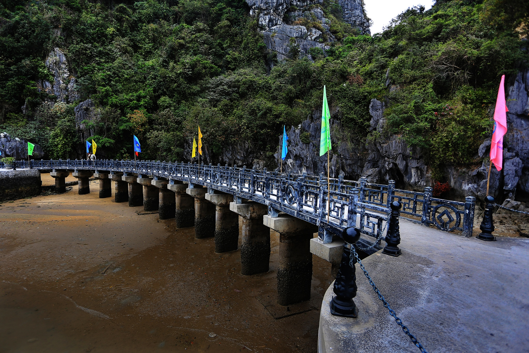 Photo in Travel #bridge #nature #green #trees