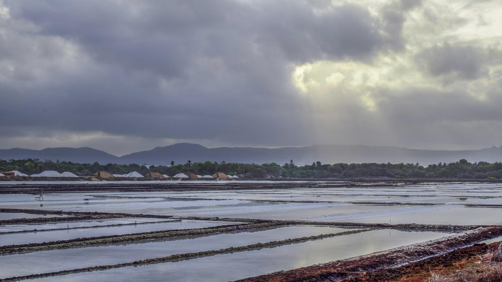 Ray of hope by Prasad Dalvi