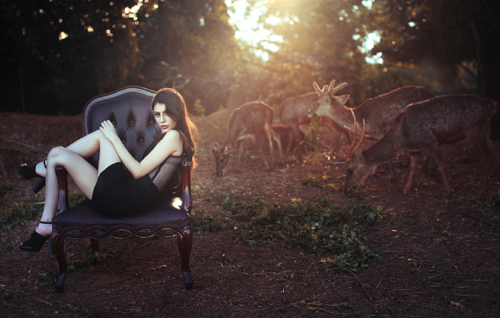 summer in zoo by yudiecesi