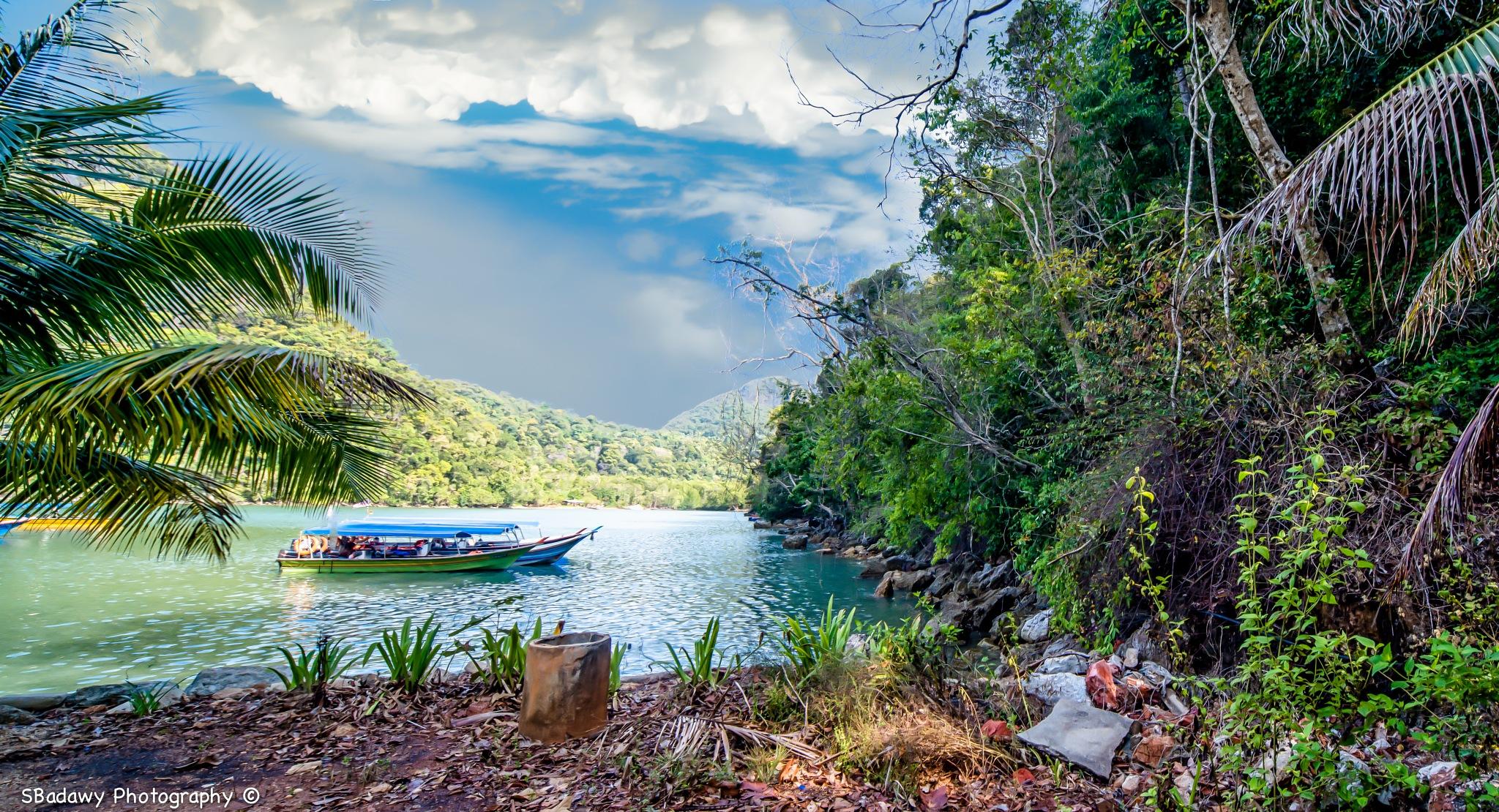 Nature in Malaysia  by Sherif Badawy