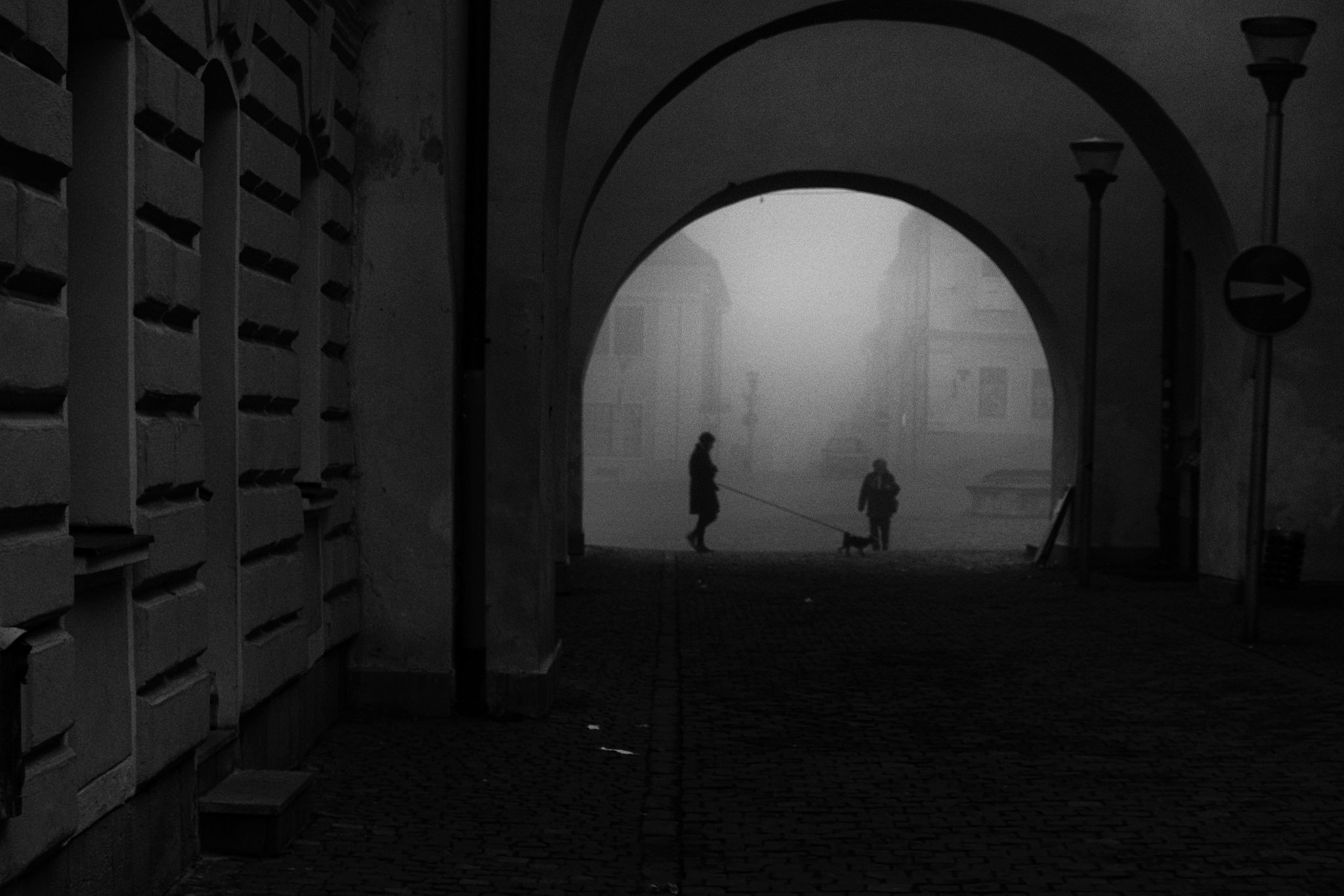 Morning walk by miroslavpolca