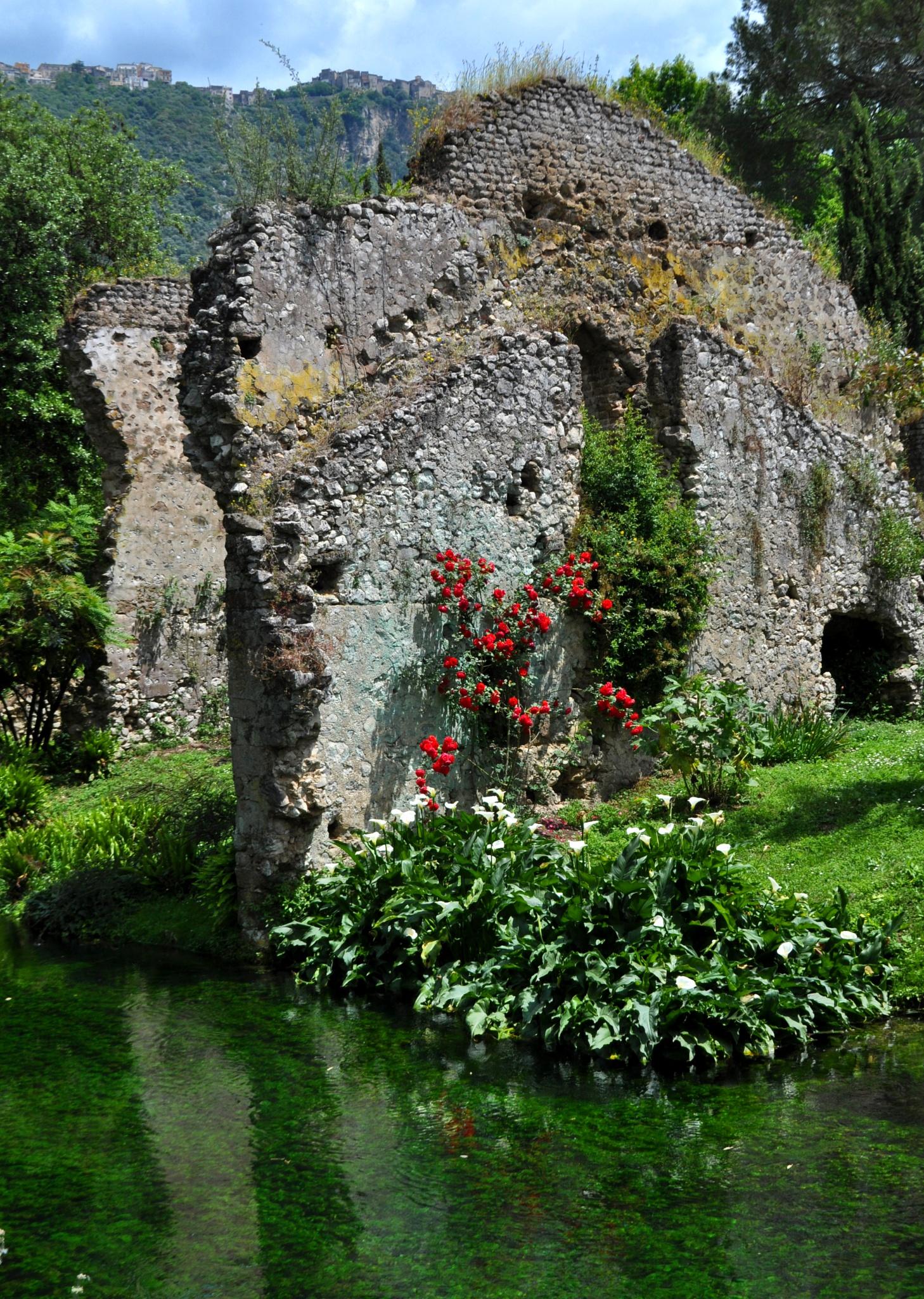 Springtime memories (2) by clatem