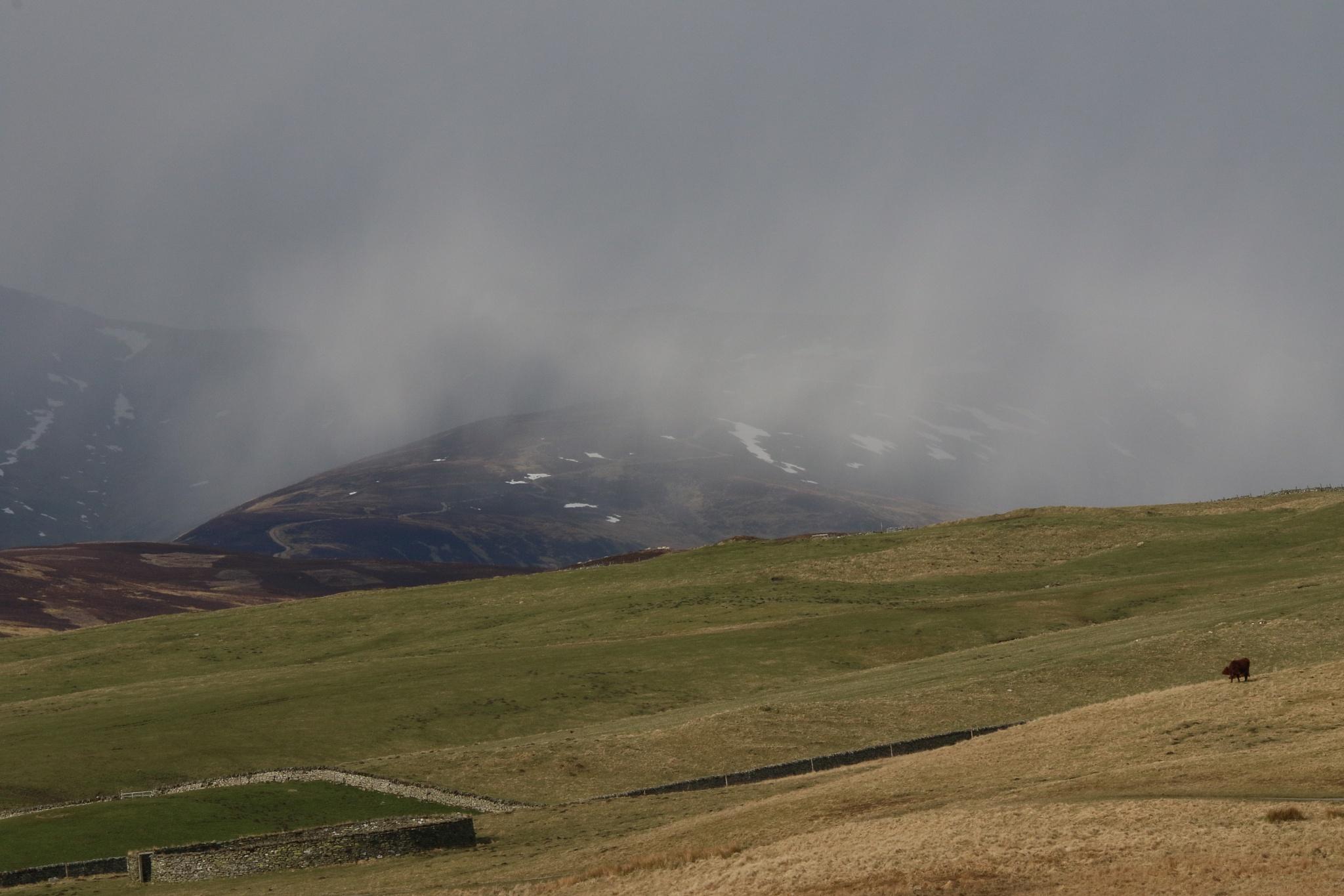 Snow shower over Glen Tilt by annecotton