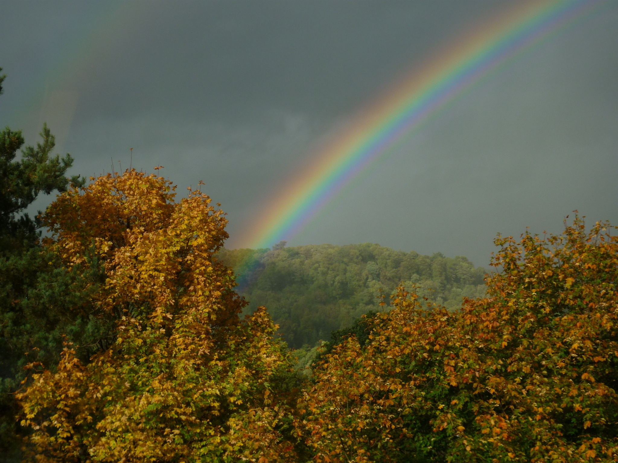 Autumn colours and rainbow by annecotton