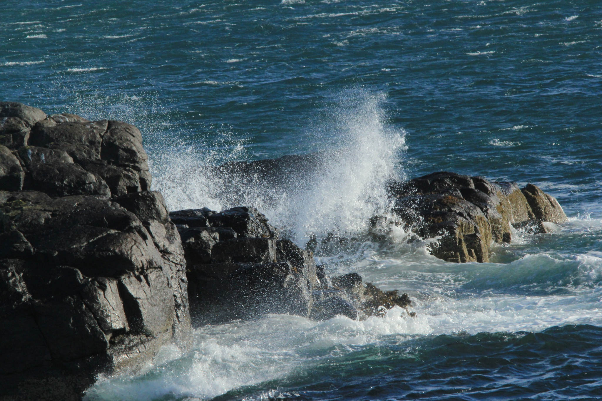 Rocks and sea by annecotton