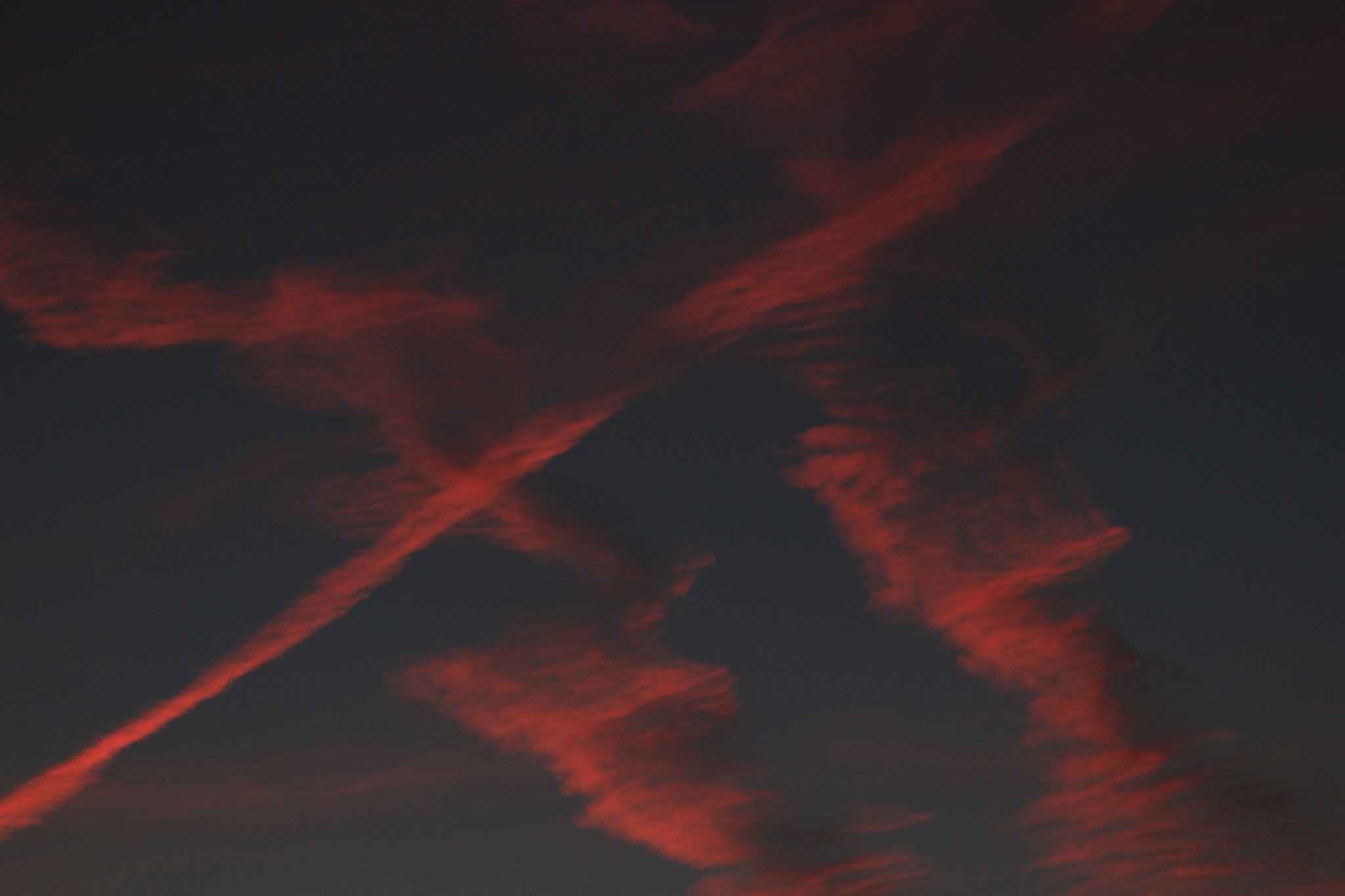 Contrails at dawn by annecotton
