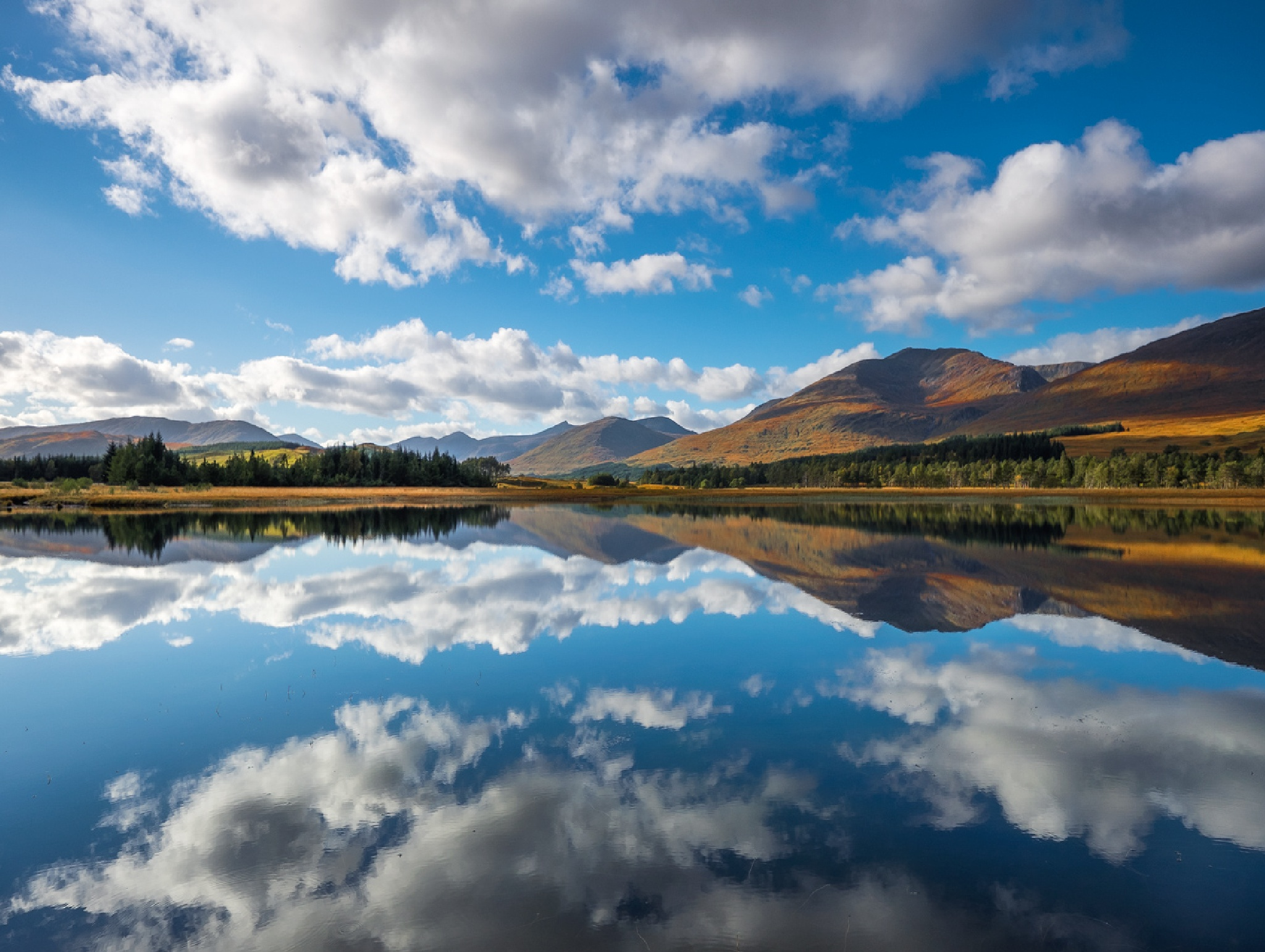 Reflection Perfection by hwatt
