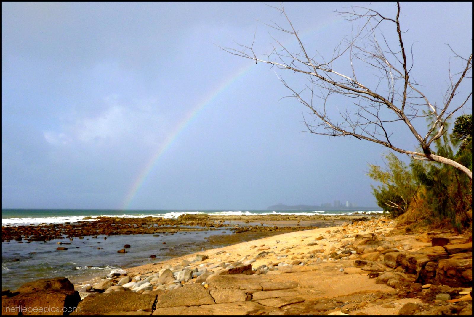Rainbow at the Beach by Nettie Bee