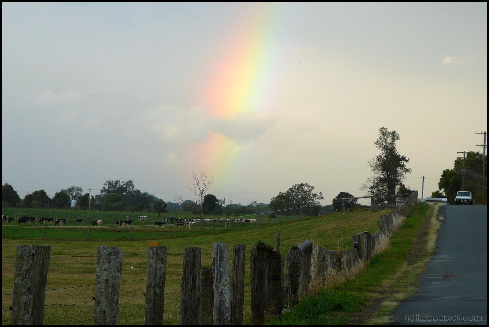 Rainbow on the Farm by Nettie Bee