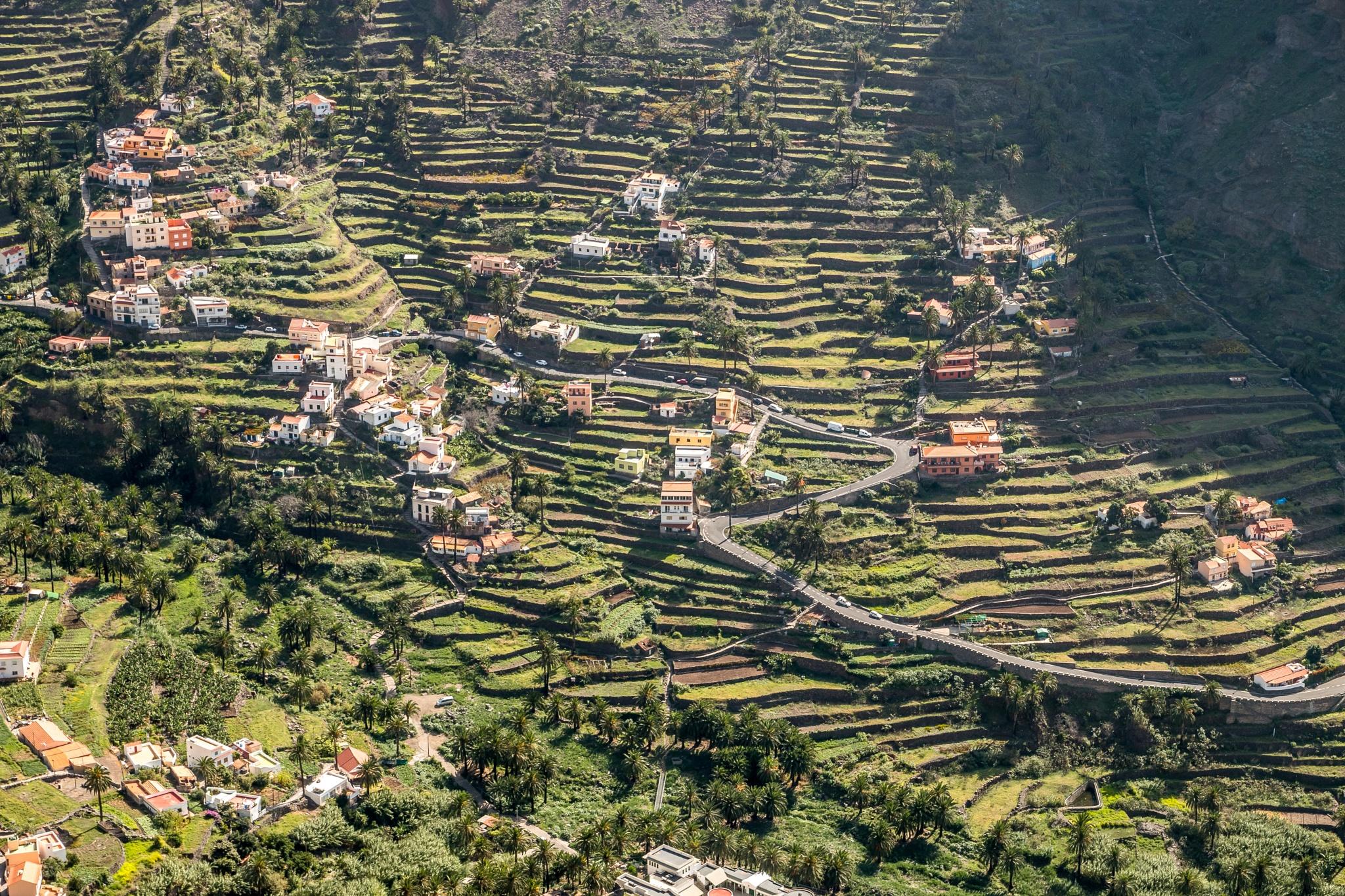 Terrasses in Valle Gran Rey - La Gomera by Chamkhi Jamil