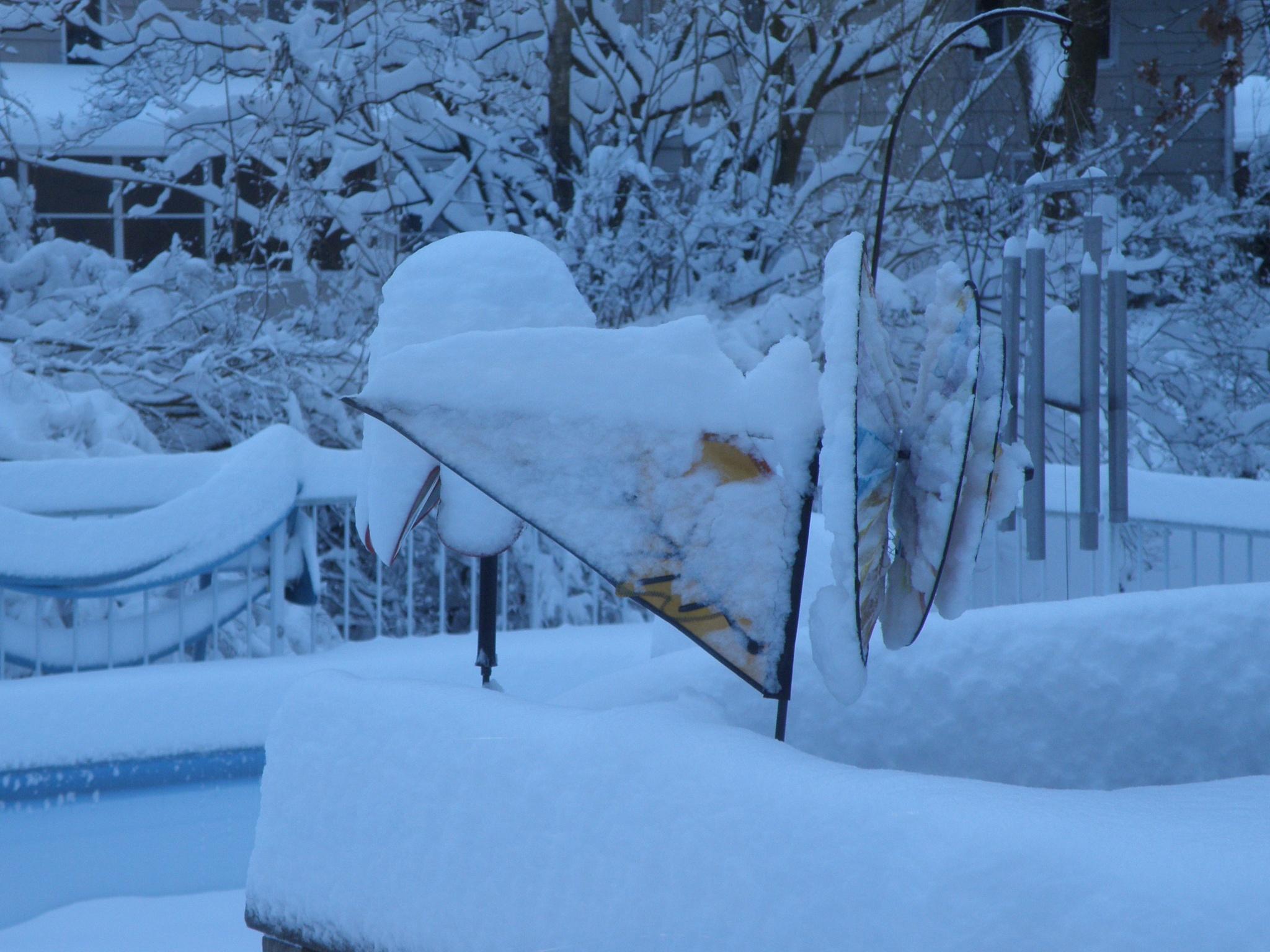 Heavy Snow  by jcettina