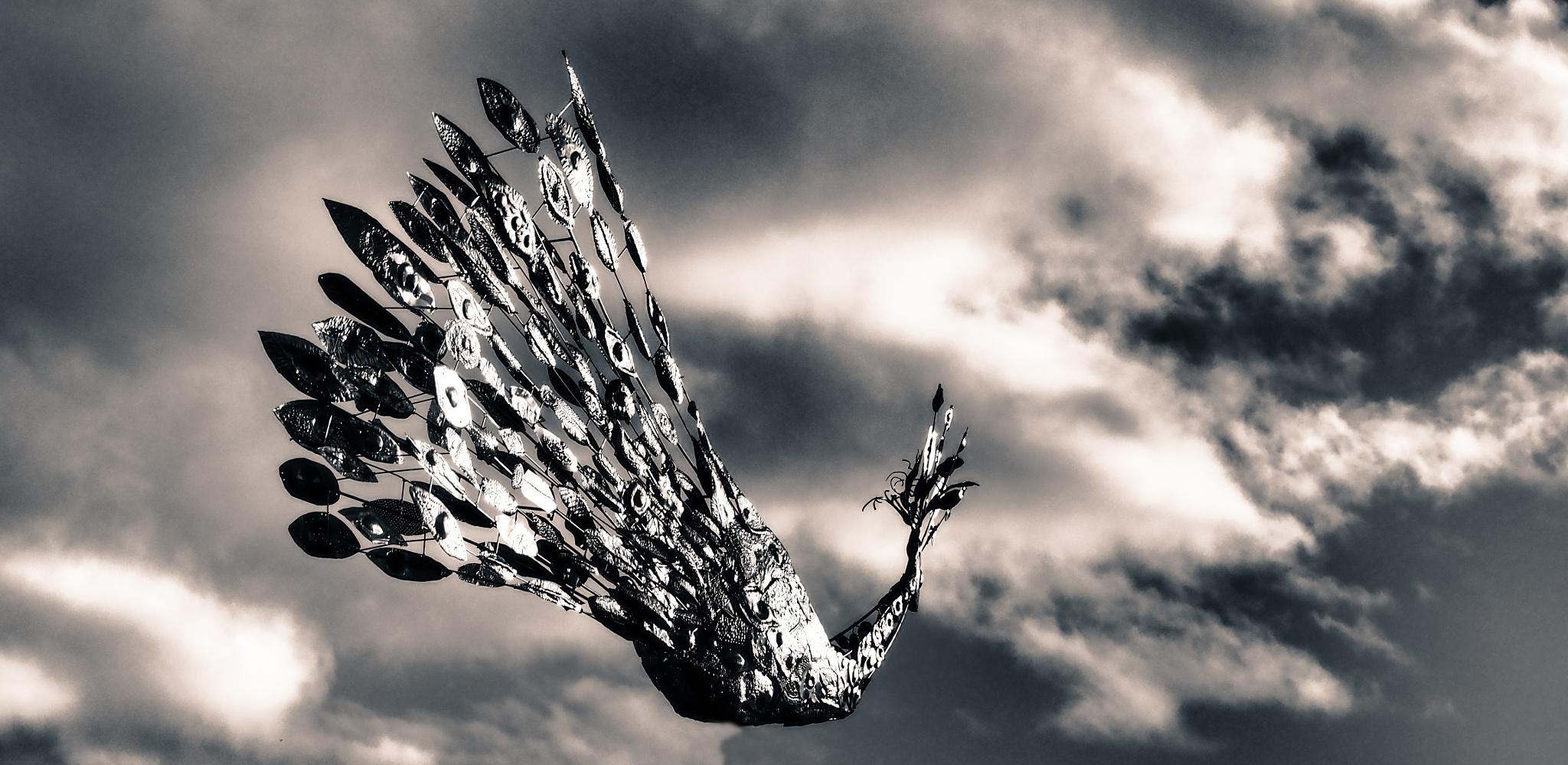 Berlin Steel Phoenix Black & White by Jeans Brown Photography / Jens Schwarz