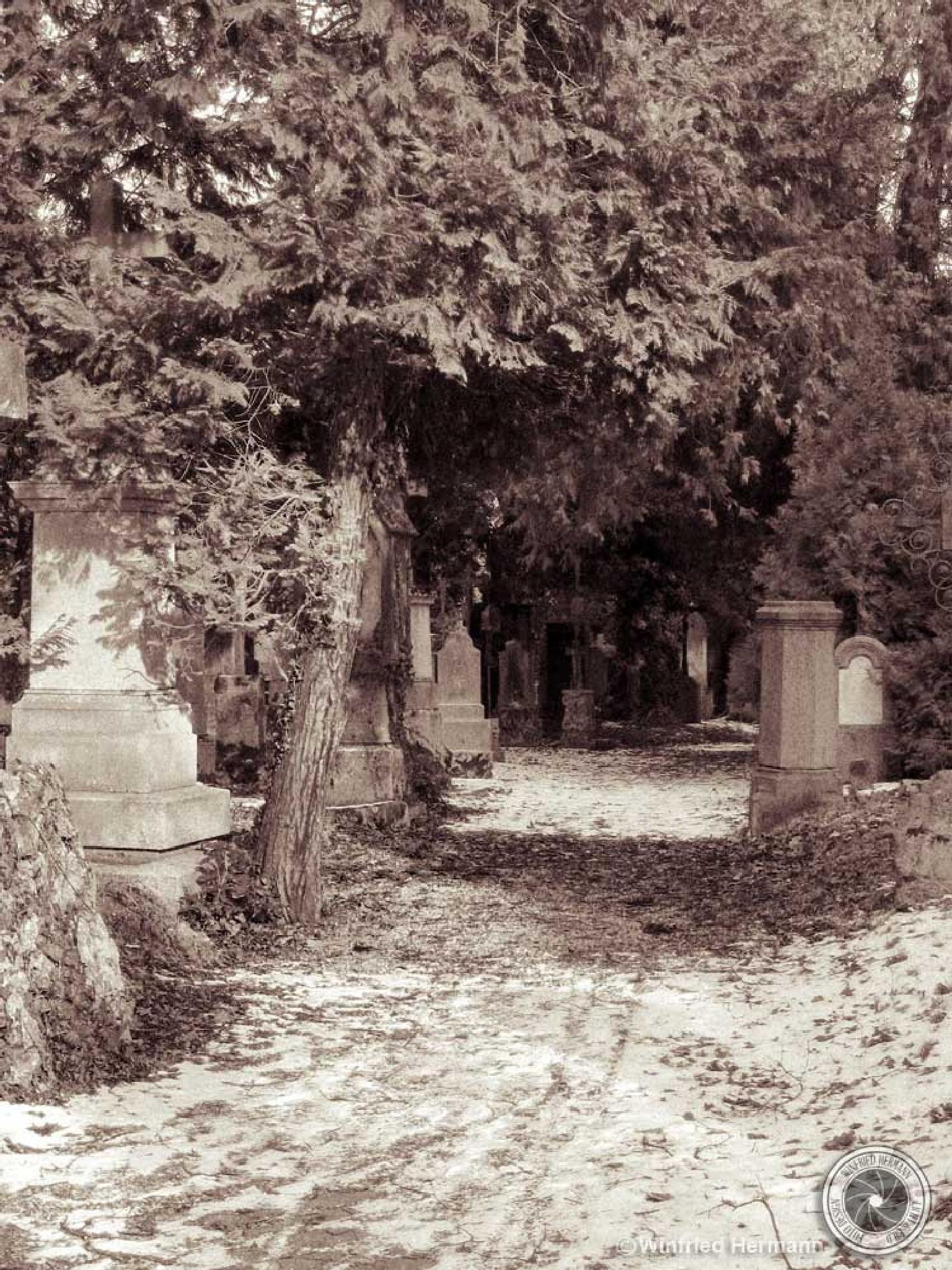 Churchyard by WinfriedHermann