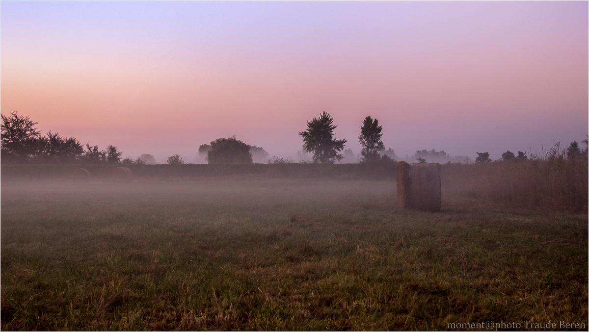 Herbstmorgen by Traude Beren
