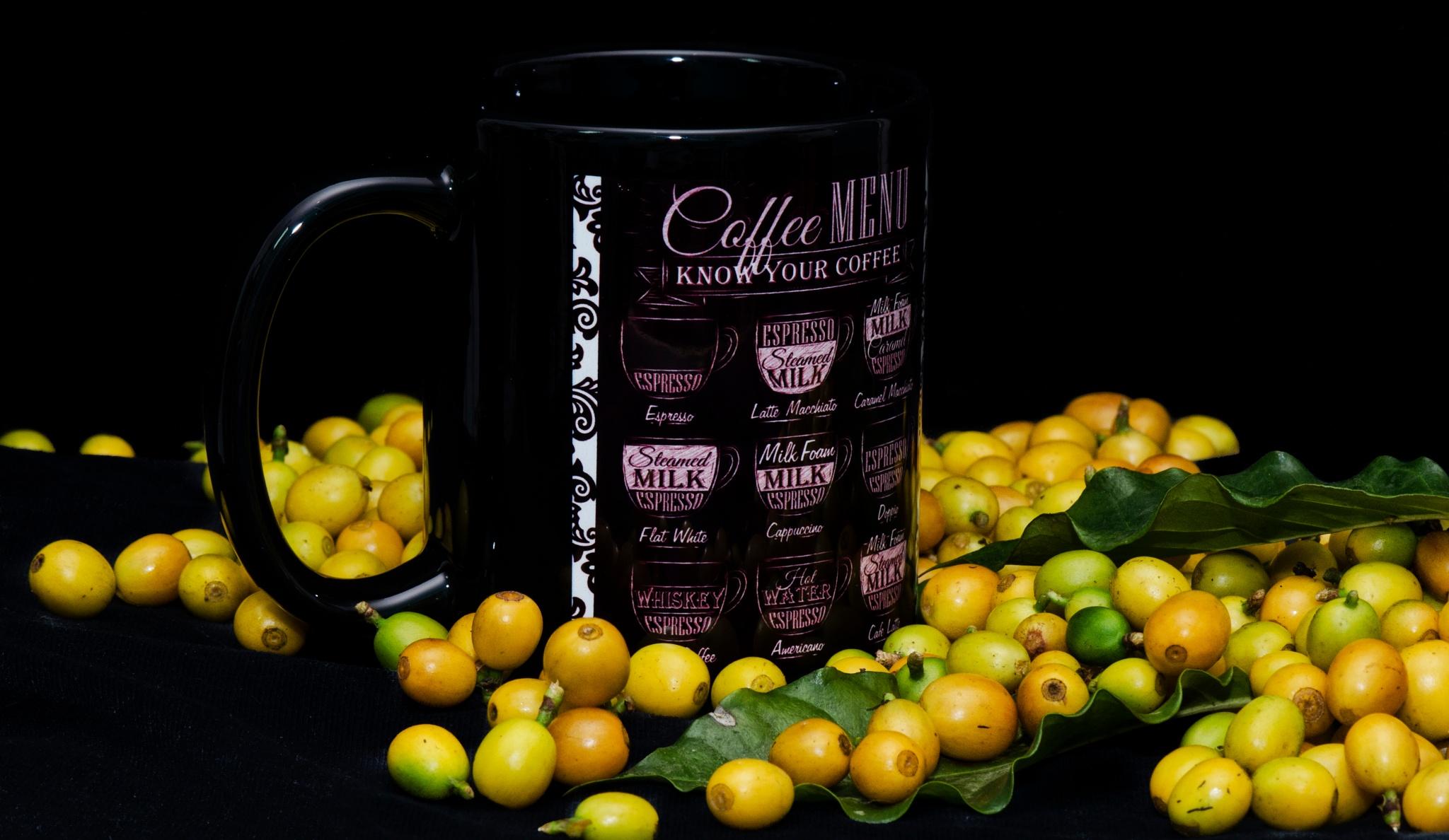 Brazilian Coffee by Maum