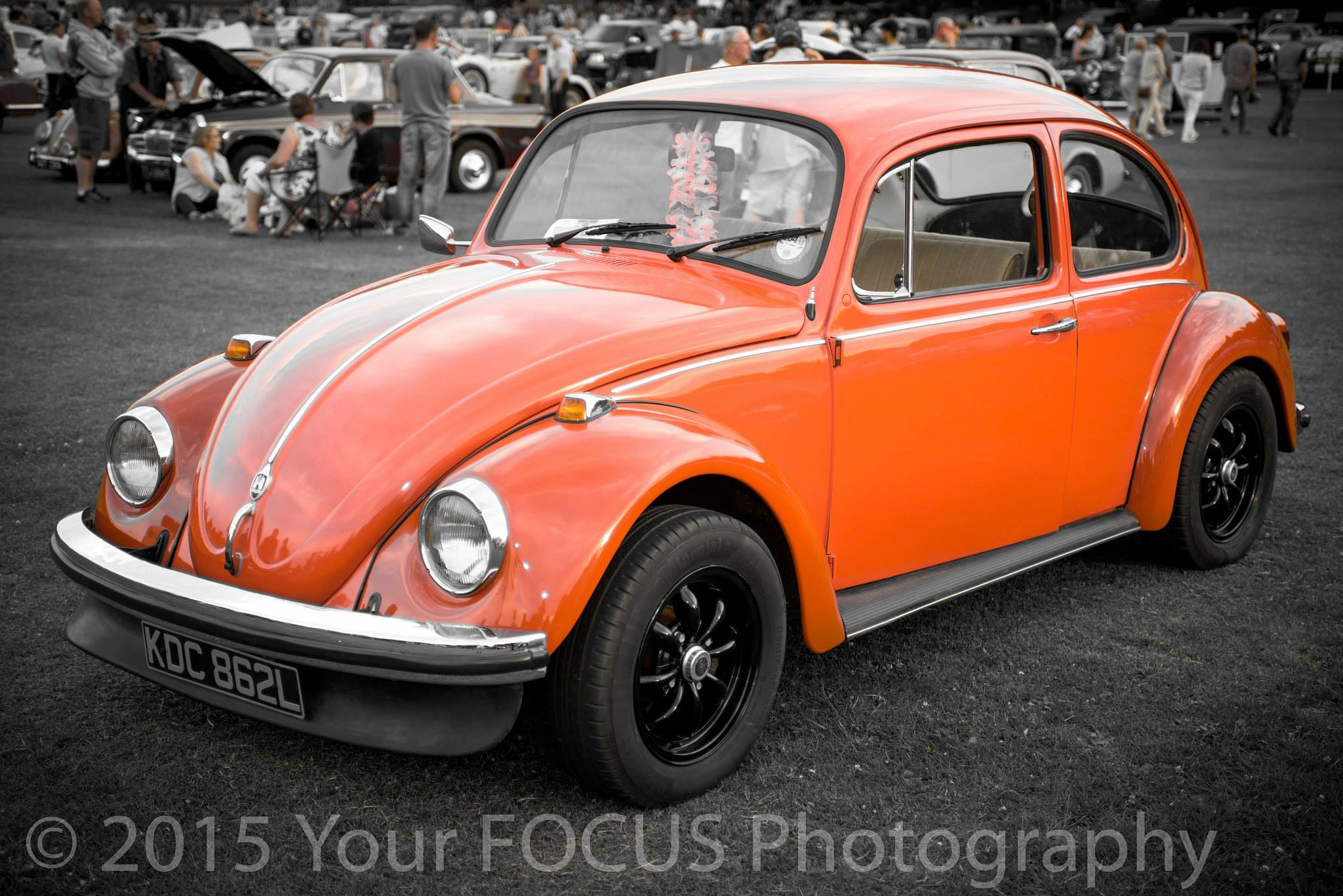 The bug by Chris Bowen