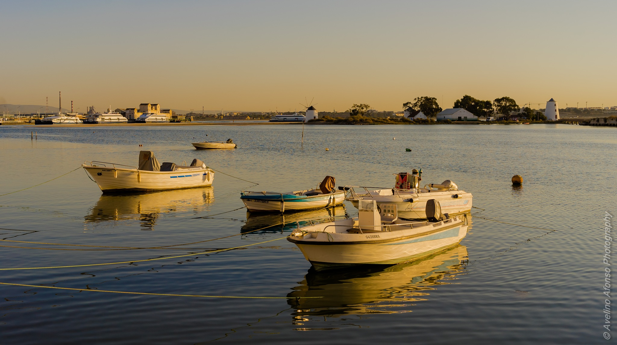 Fleet by Avelino Afonso