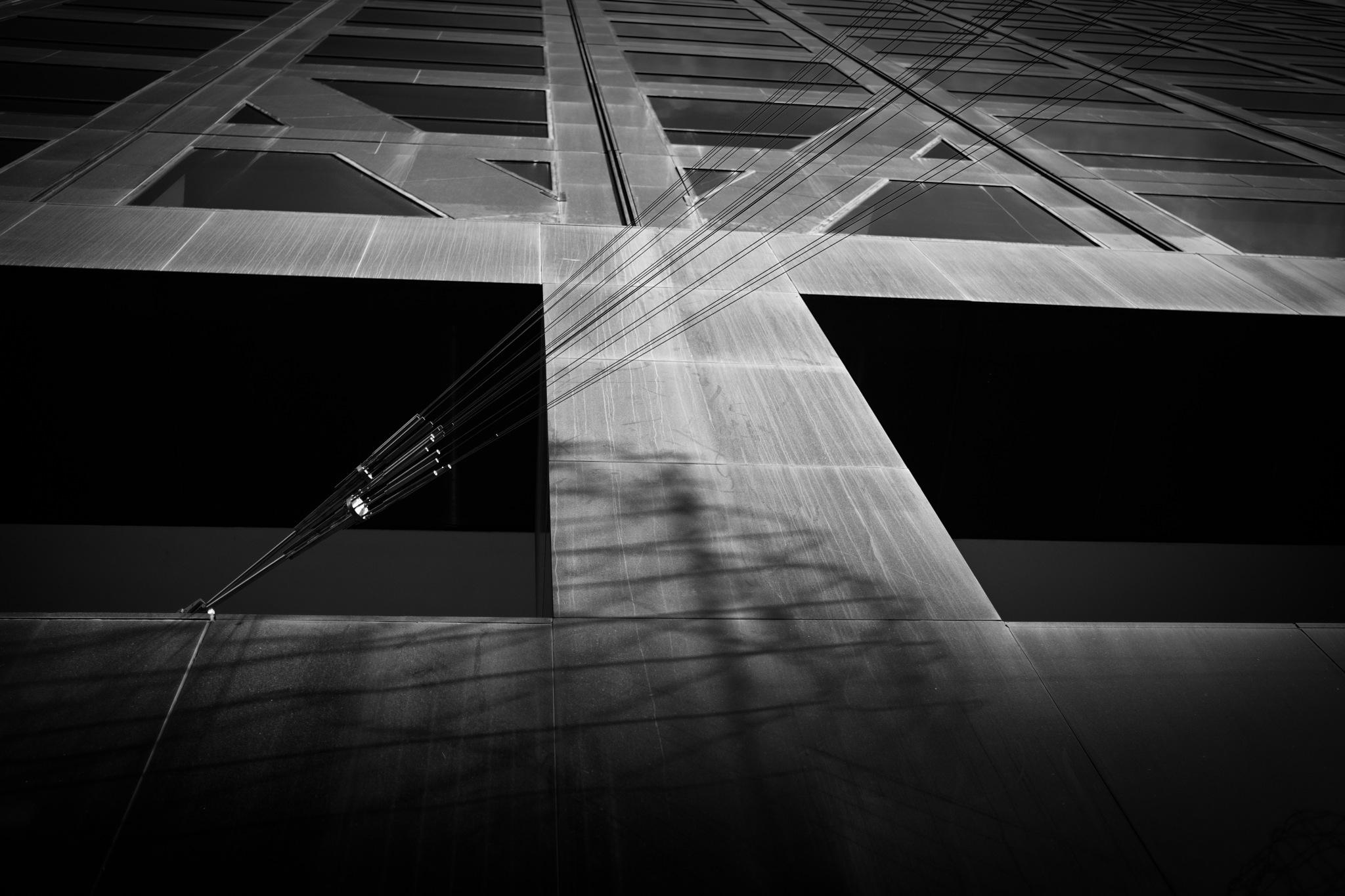 Light Trance by Peter Denniston