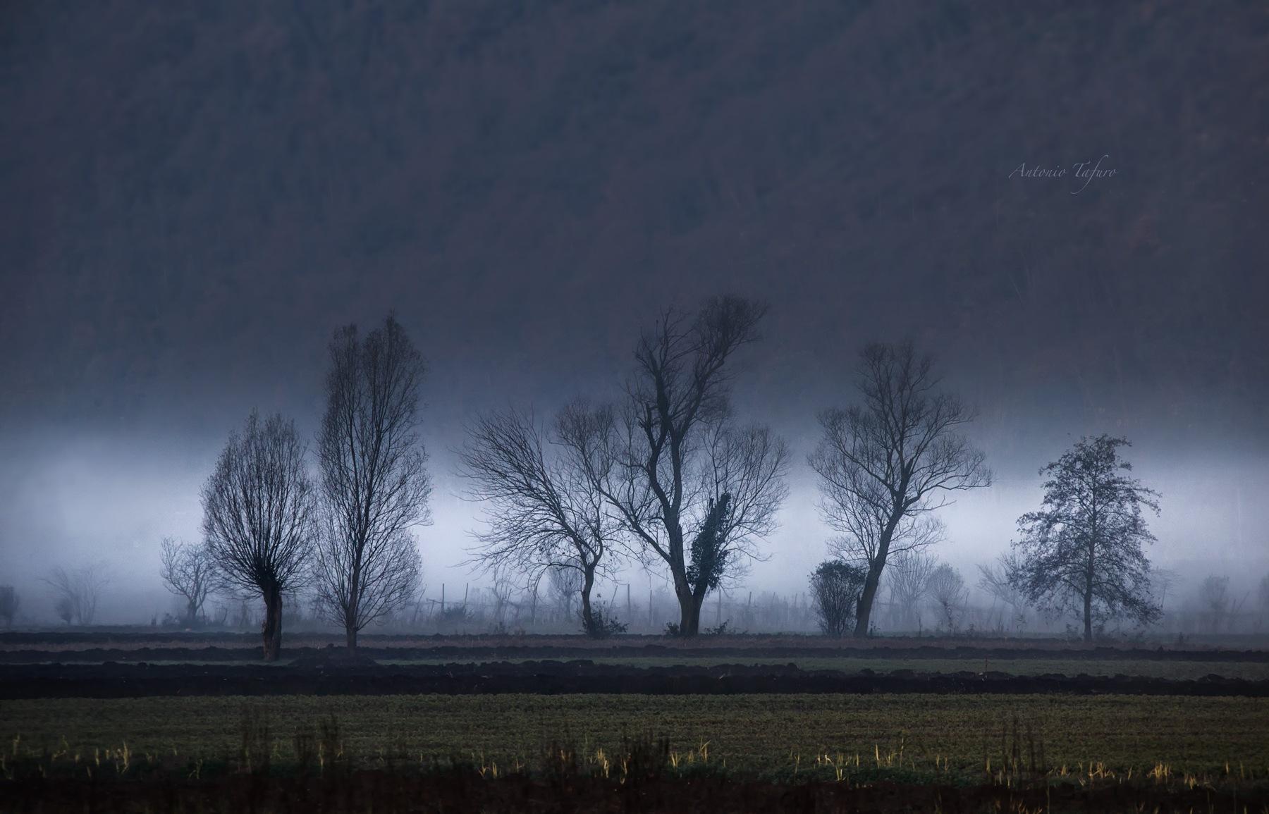 Sagome di nebbia by Antonio Tafuro