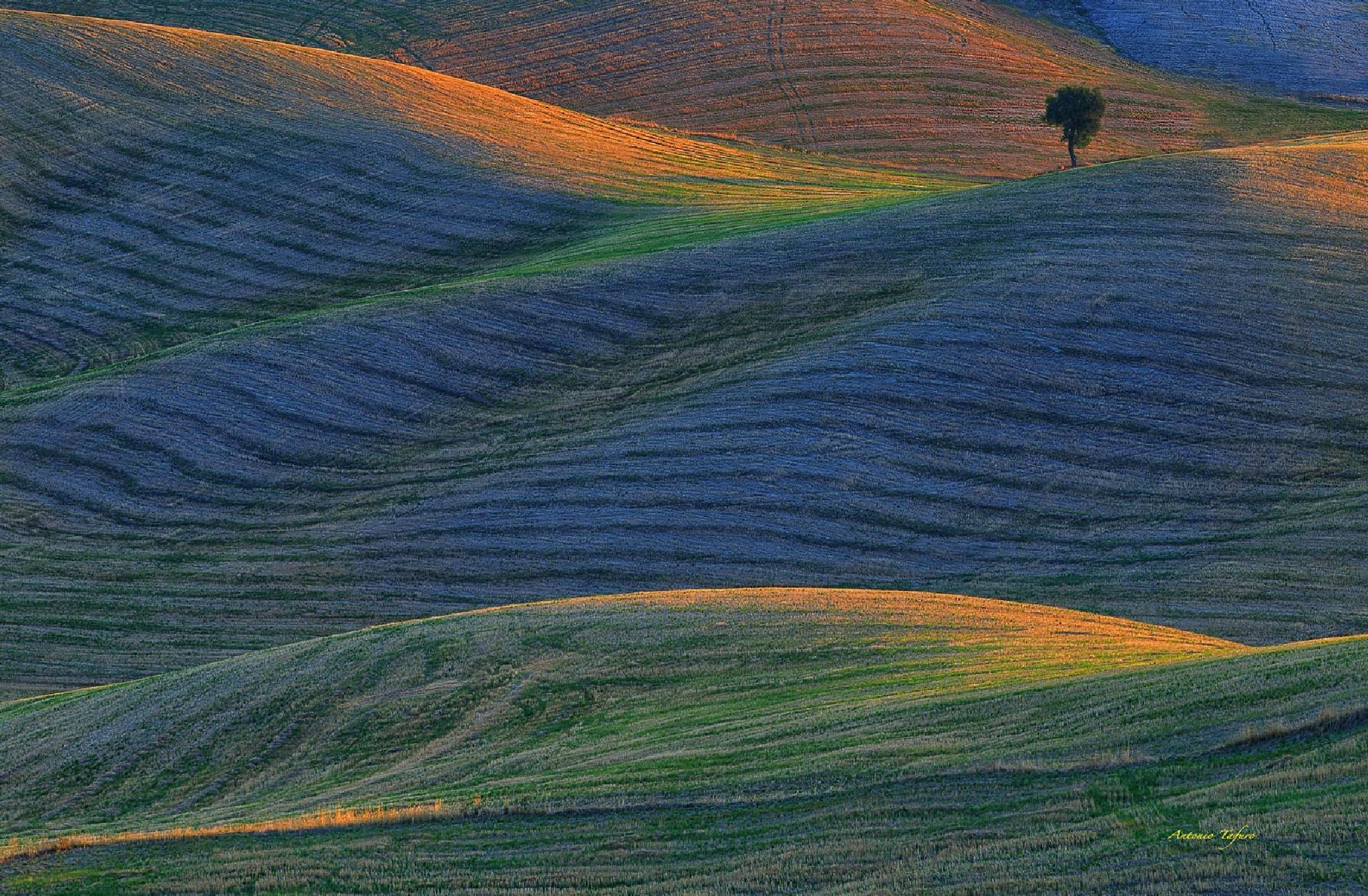 earth colors by Antonio Tafuro