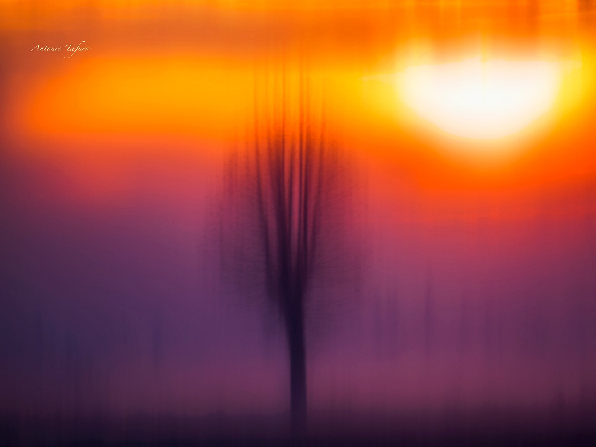 brushstrokes of nature by Antonio Tafuro