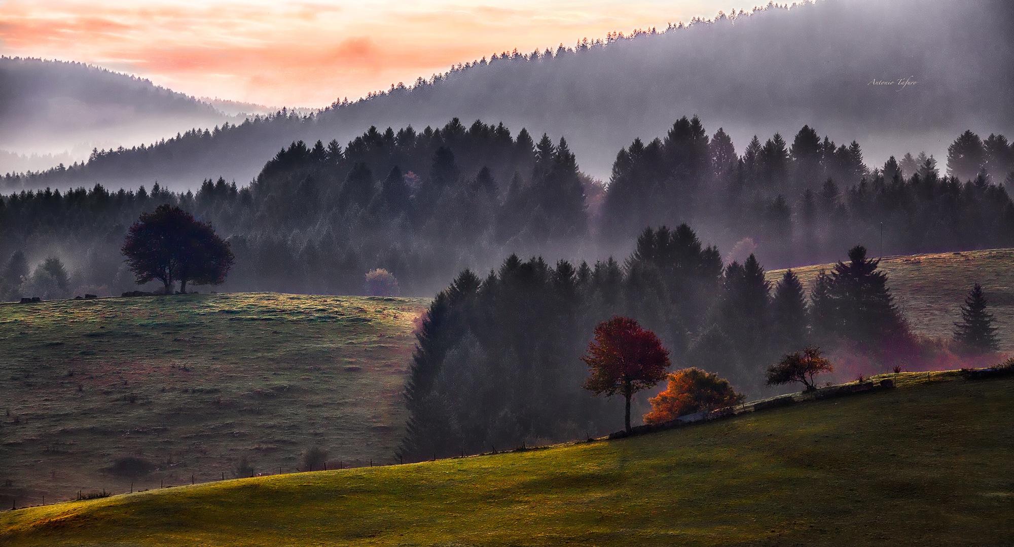 i colori dell'alba by Antonio Tafuro