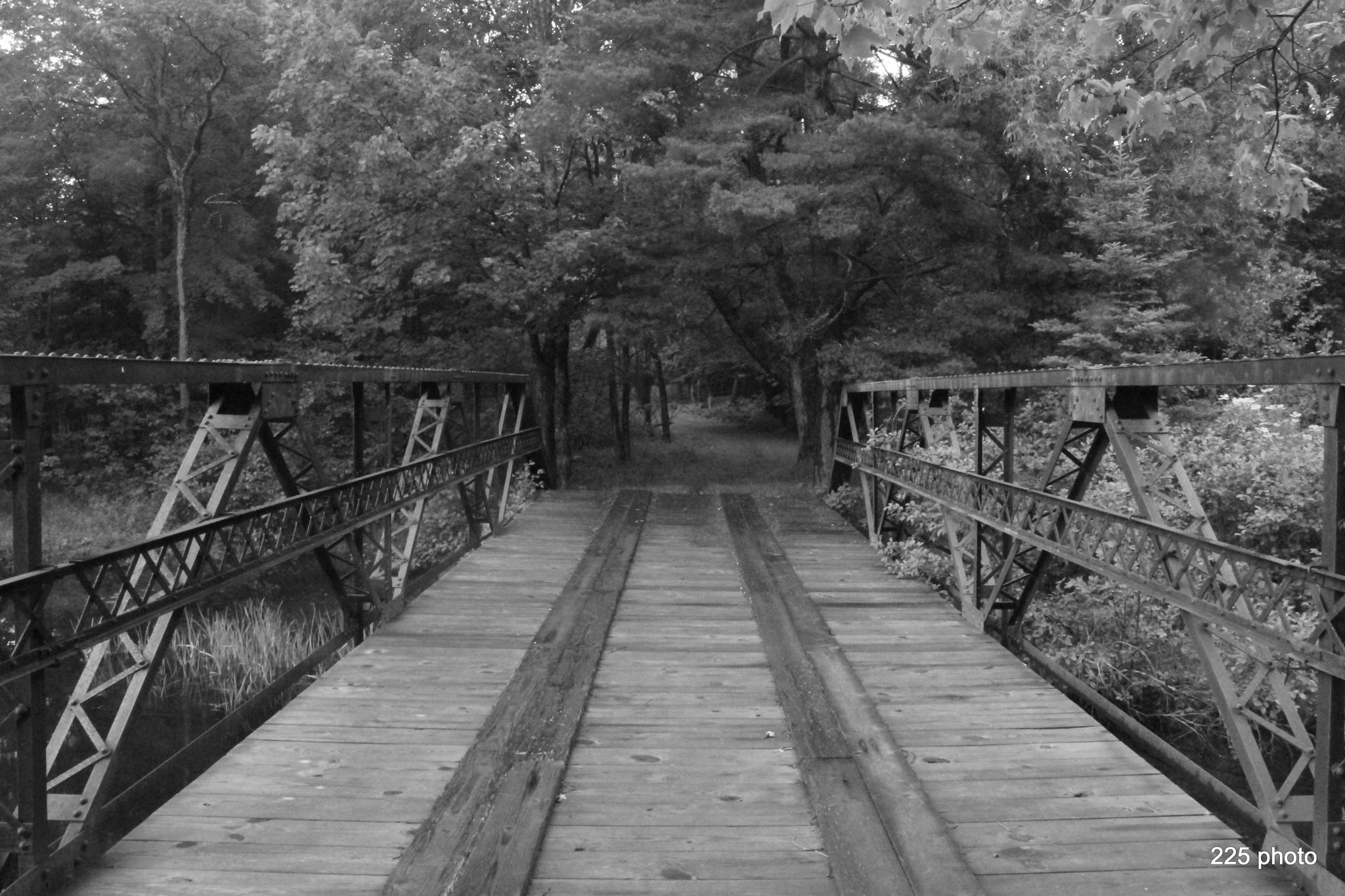 Trail bridge by Joe Mcavoy