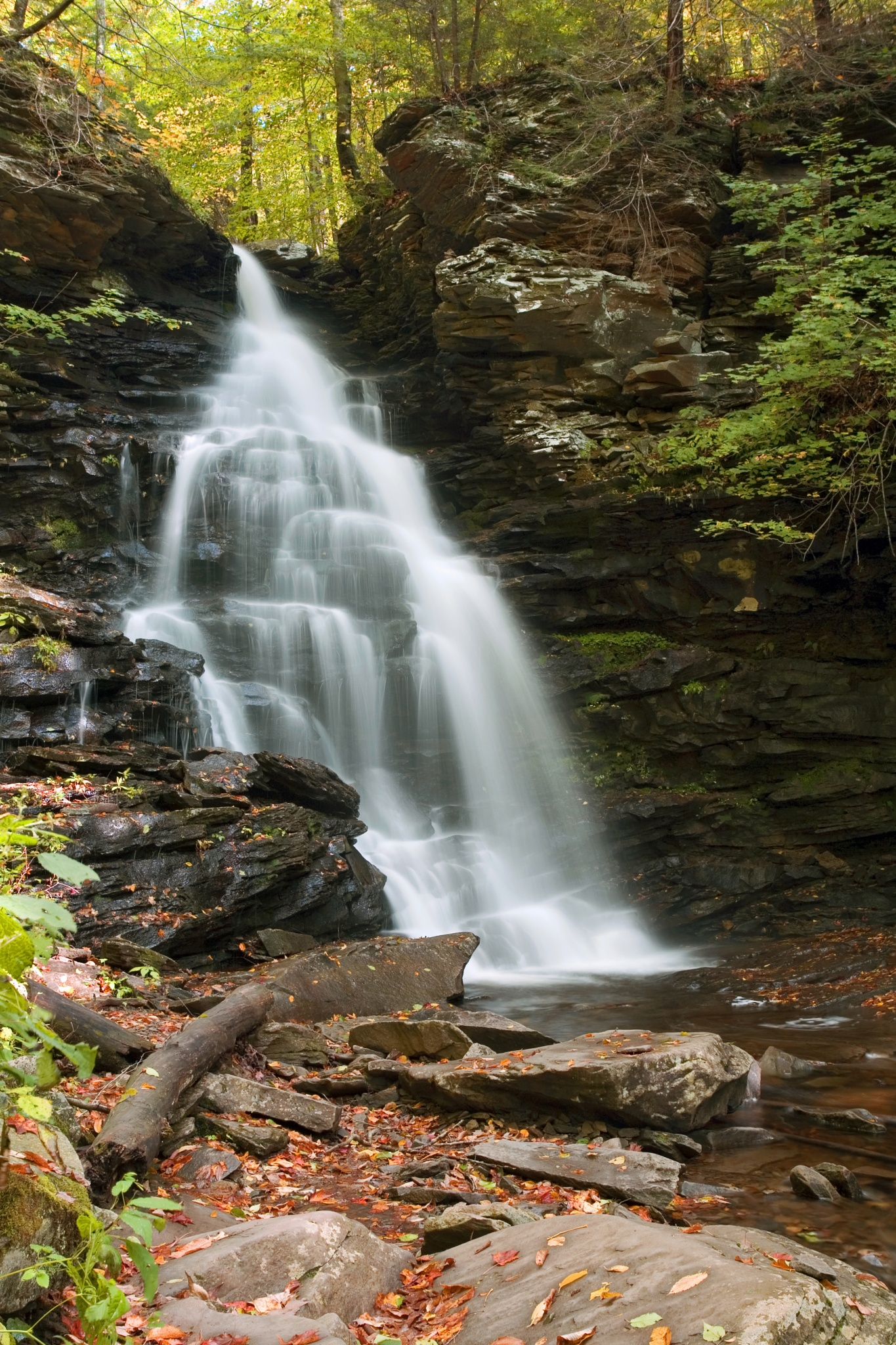 Early Autumn Morning Below Ozone Falls by Gene Walls