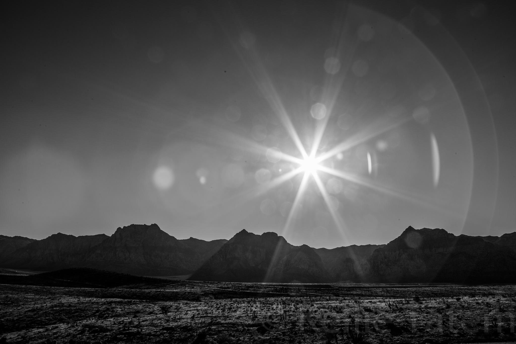 Desert afternoon by Kellie Tatem