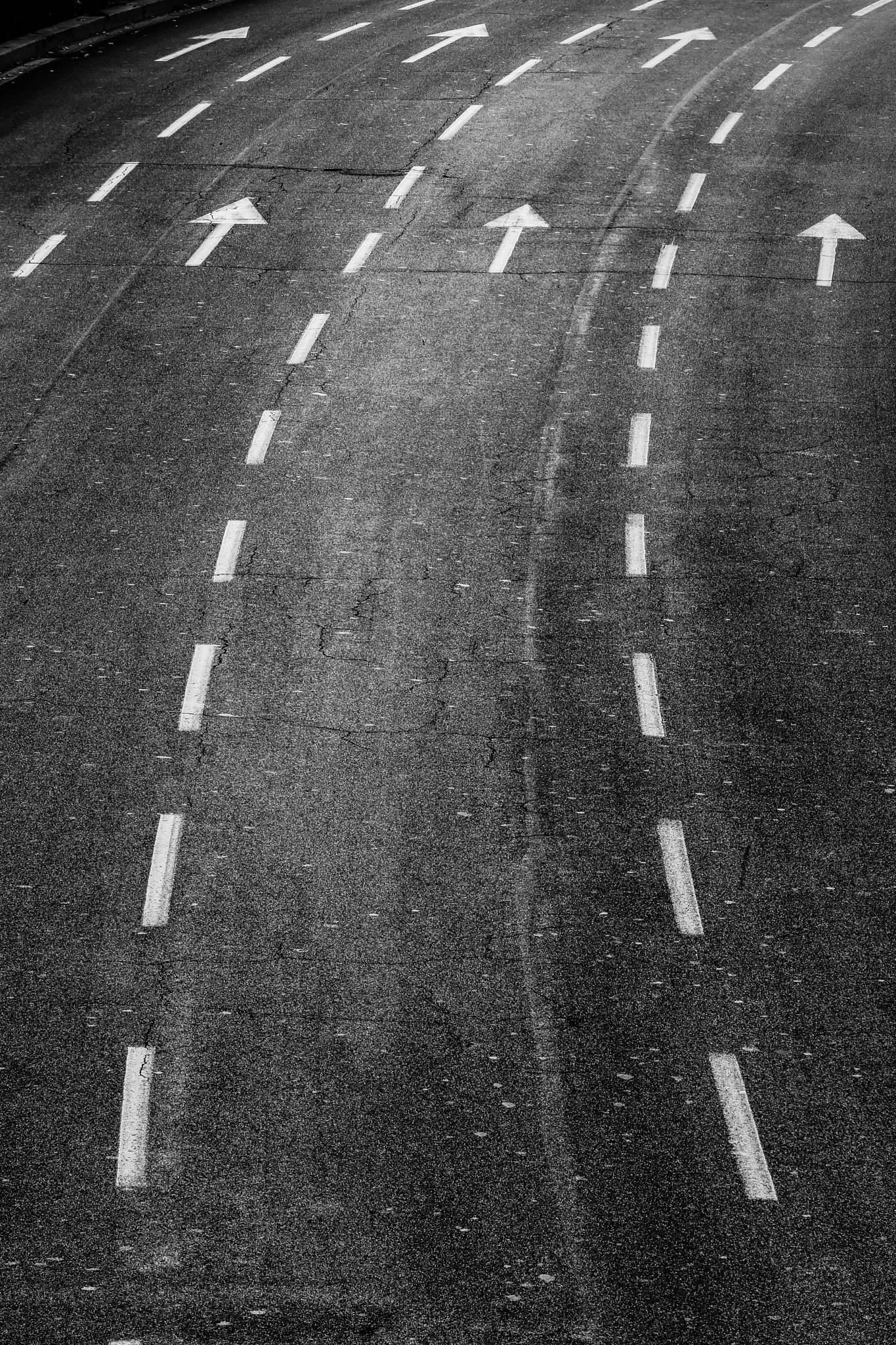The choice by vipera1956
