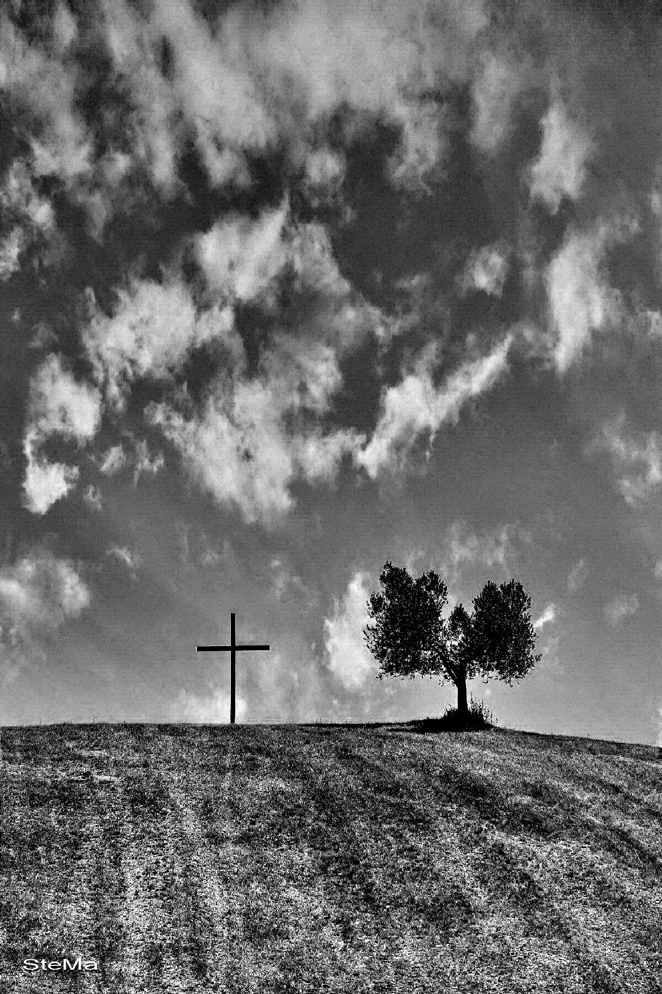 Sacrifice and resurrection by vipera1956