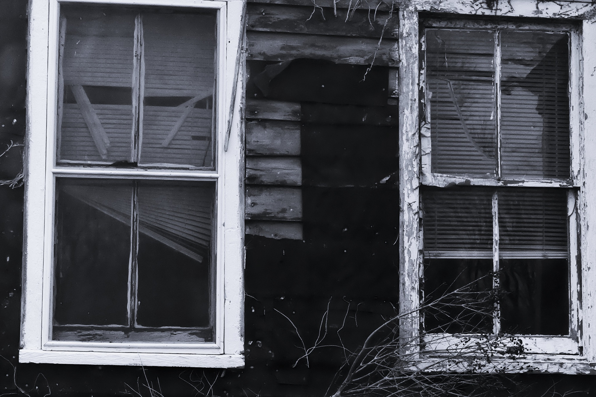 Windows of the World by vmunoz