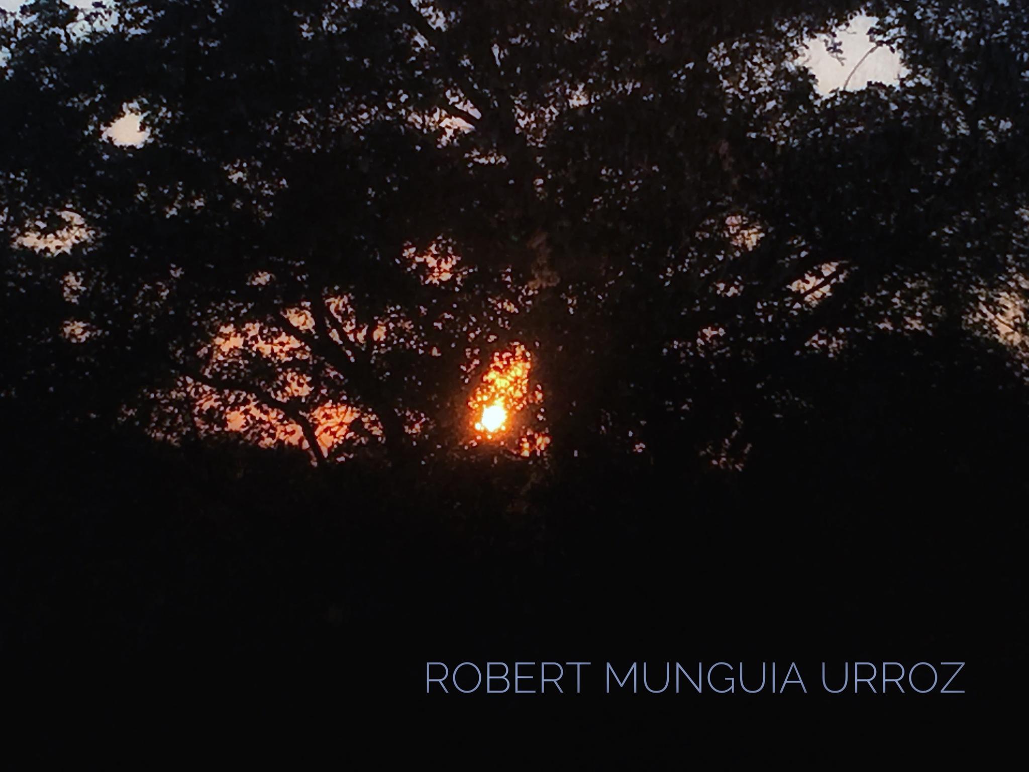 Sunset by Robert Munguia